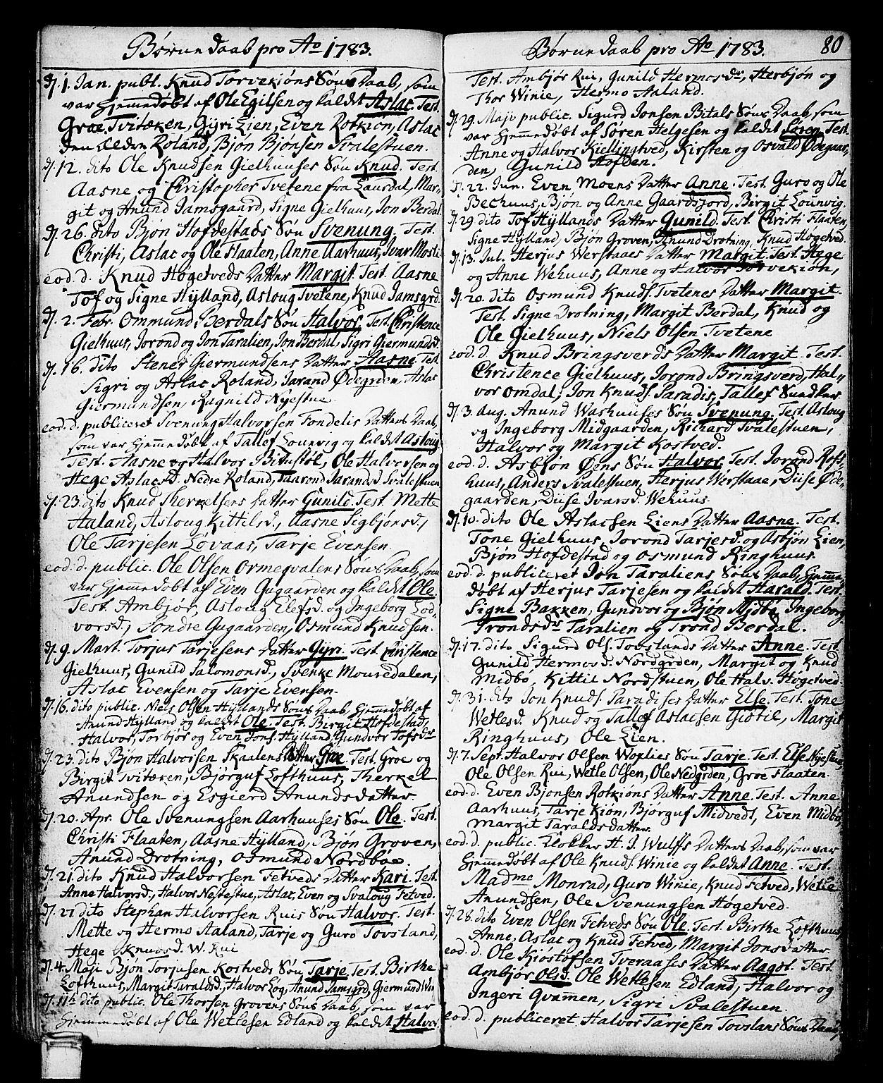 SAKO, Vinje kirkebøker, F/Fa/L0002: Ministerialbok nr. I 2, 1767-1814, s. 80
