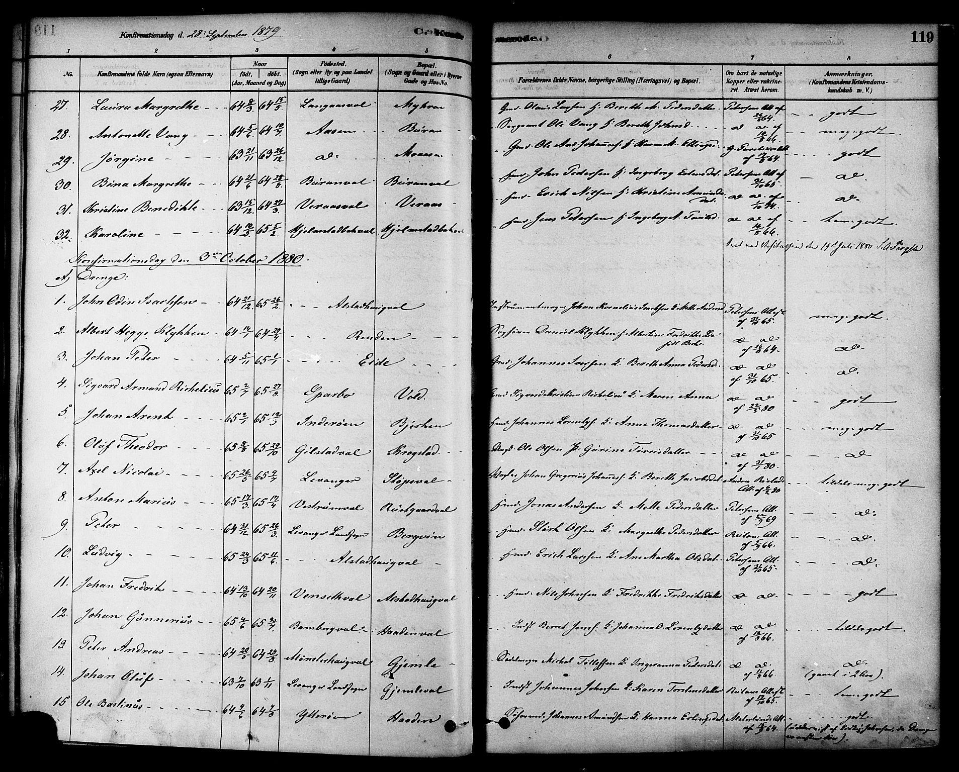 SAT, Ministerialprotokoller, klokkerbøker og fødselsregistre - Nord-Trøndelag, 717/L0159: Ministerialbok nr. 717A09, 1878-1898, s. 119