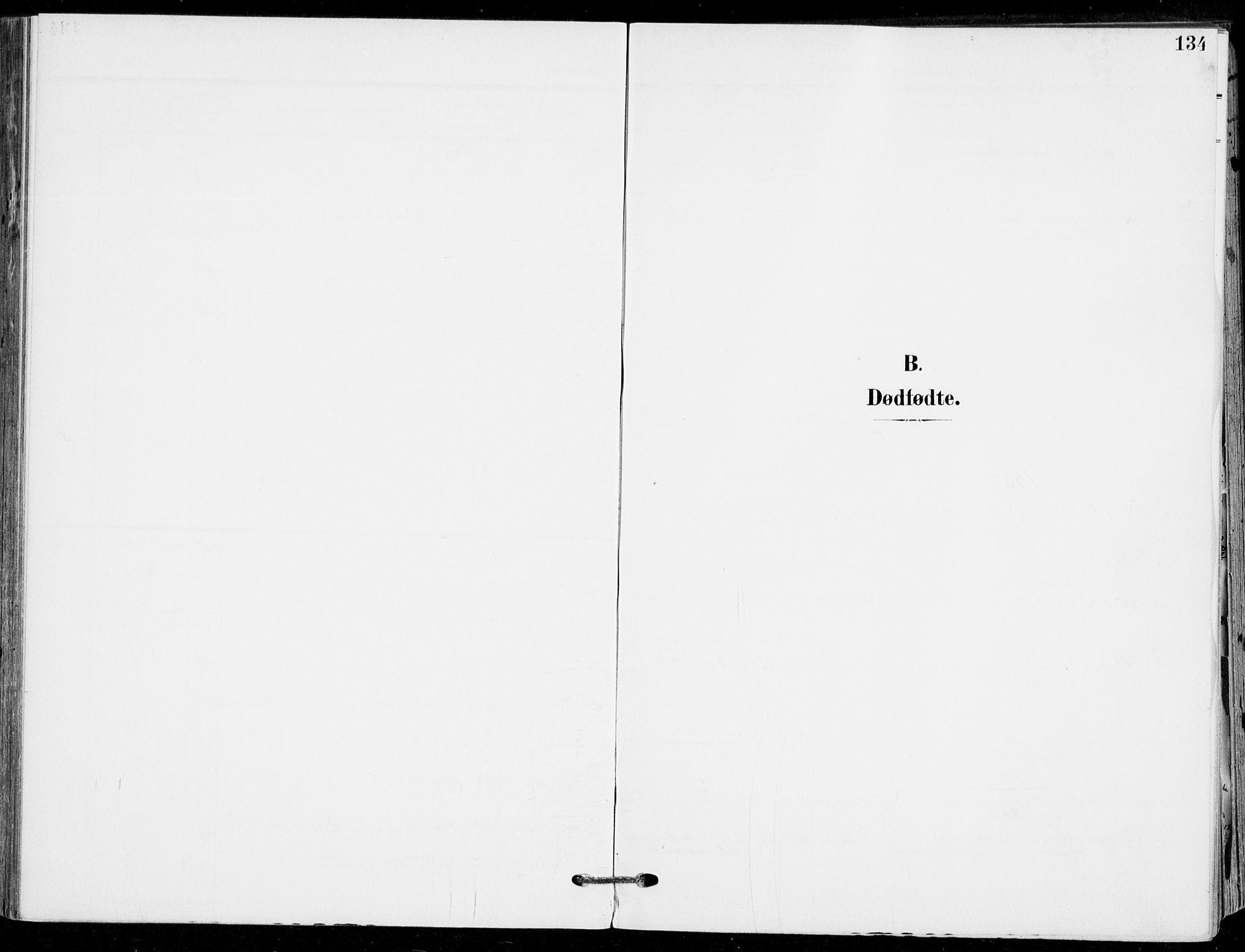 SAKO, Sande Kirkebøker, F/Fa/L0008: Ministerialbok nr. 8, 1904-1921, s. 134