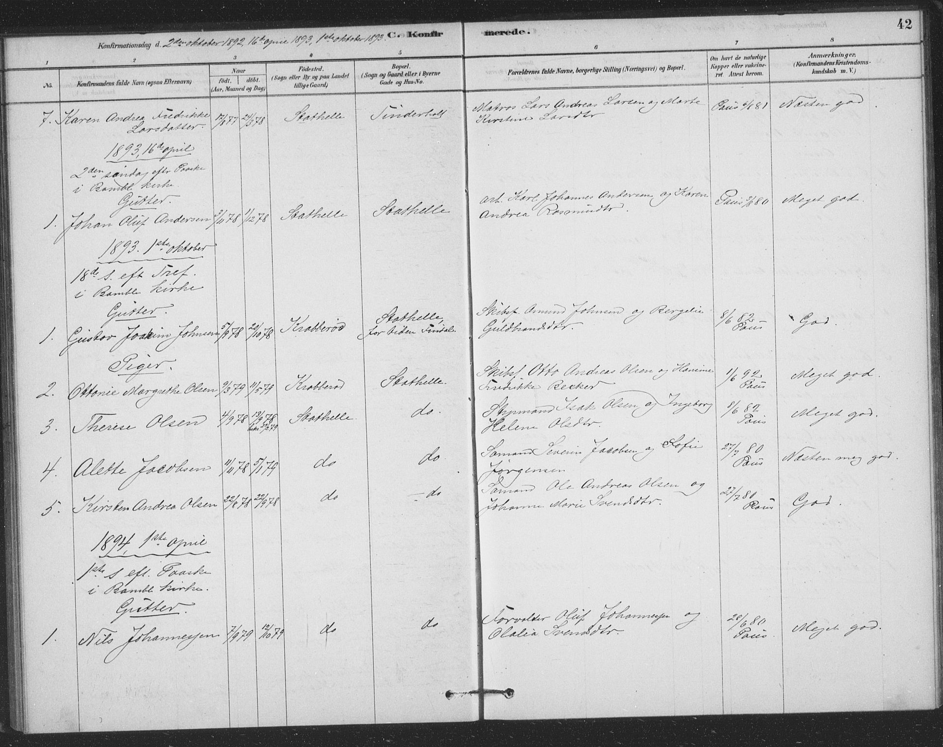 SAKO, Bamble kirkebøker, F/Fb/L0001: Ministerialbok nr. II 1, 1878-1899, s. 42