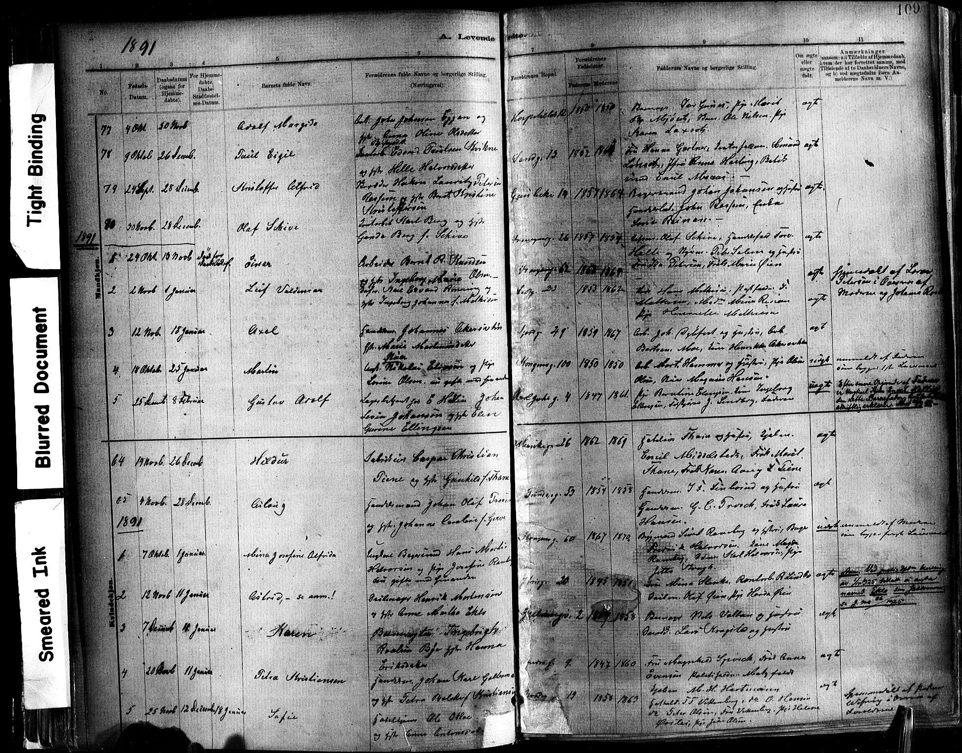 SAT, Ministerialprotokoller, klokkerbøker og fødselsregistre - Sør-Trøndelag, 602/L0119: Ministerialbok nr. 602A17, 1880-1901, s. 109