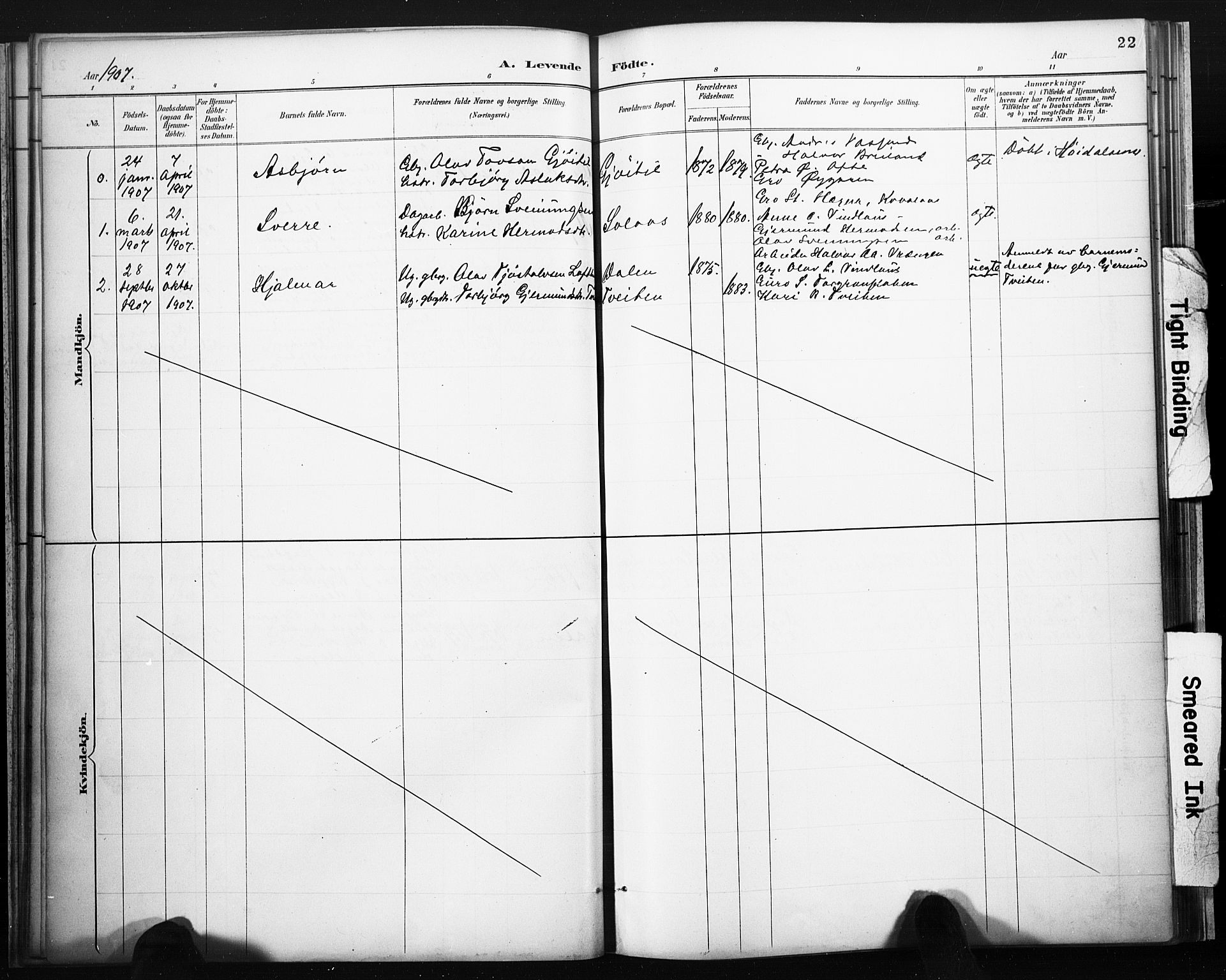 SAKO, Lårdal kirkebøker, F/Fb/L0002: Ministerialbok nr. II 2, 1887-1918, s. 22