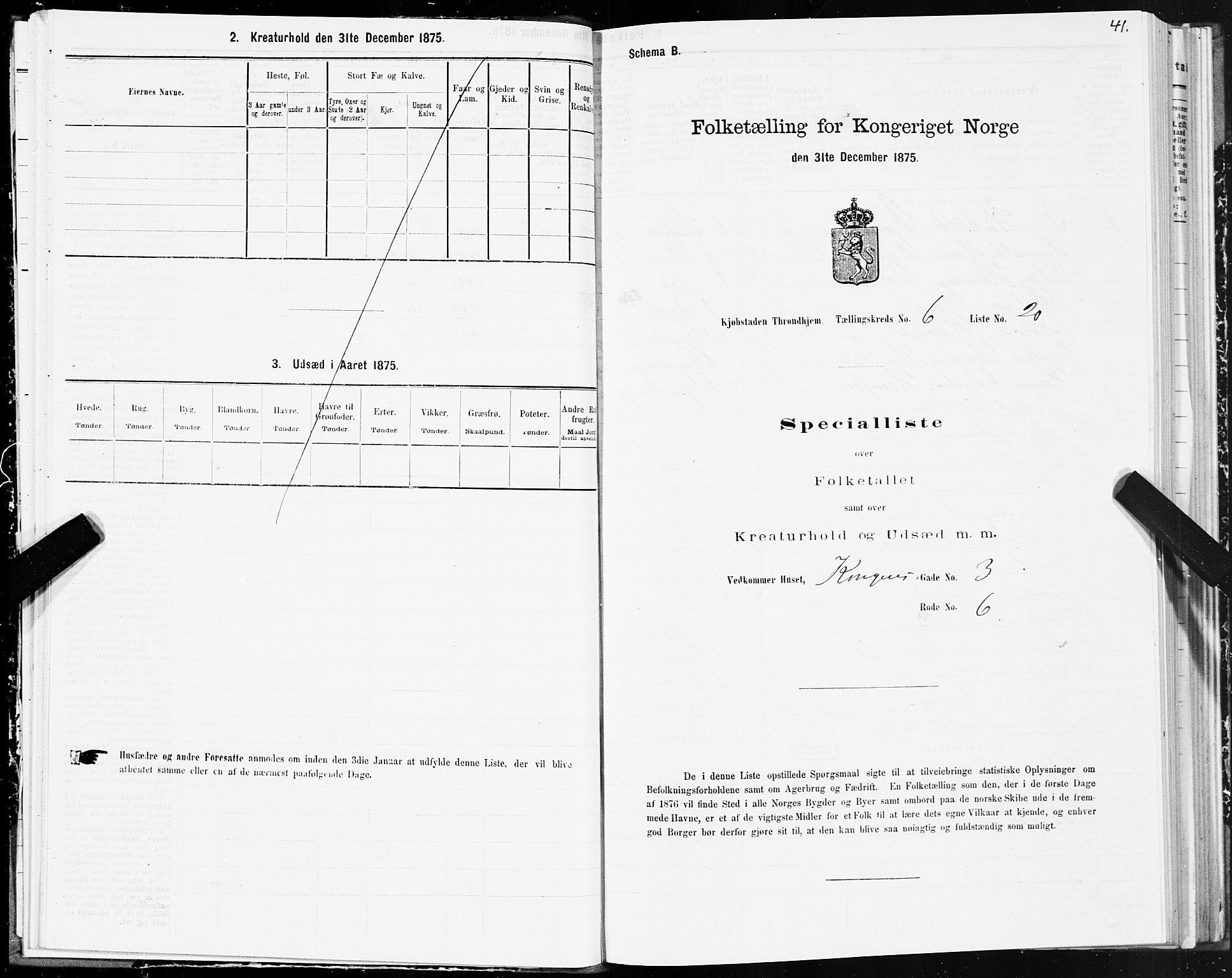 SAT, Folketelling 1875 for 1601 Trondheim kjøpstad, 1875, s. 4041