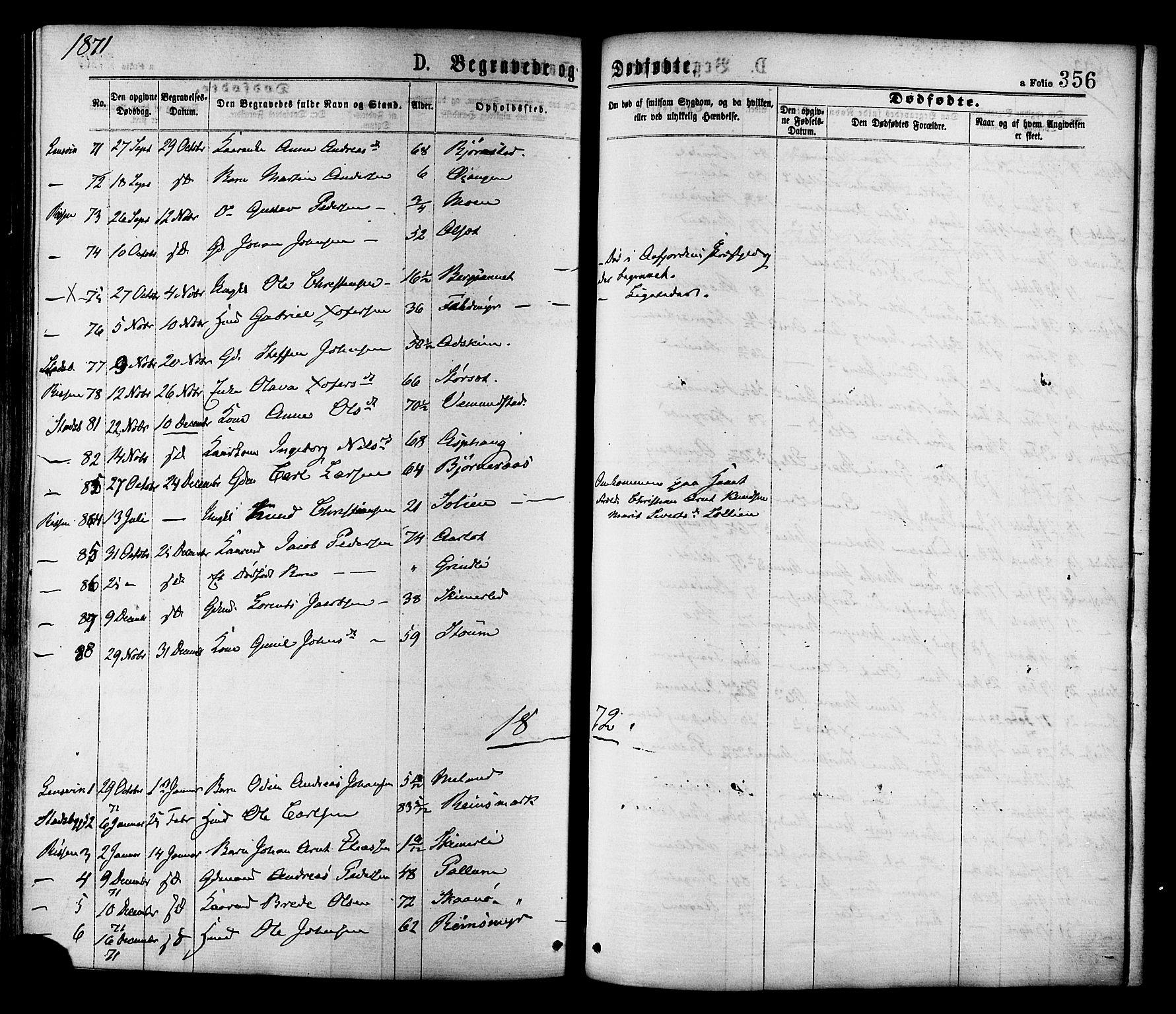 SAT, Ministerialprotokoller, klokkerbøker og fødselsregistre - Sør-Trøndelag, 646/L0613: Ministerialbok nr. 646A11, 1870-1884, s. 356