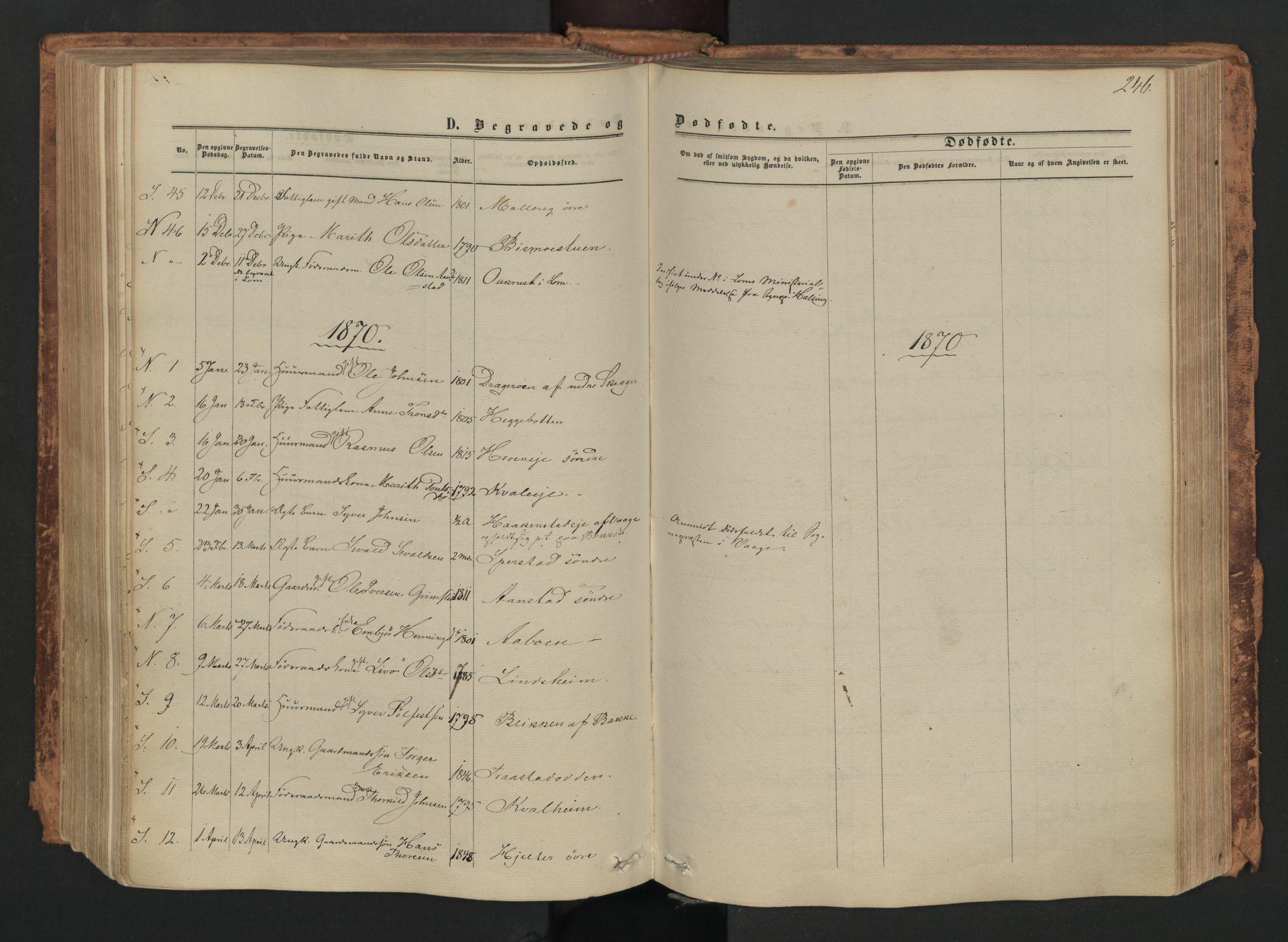SAH, Skjåk prestekontor, Ministerialbok nr. 1, 1863-1879, s. 246