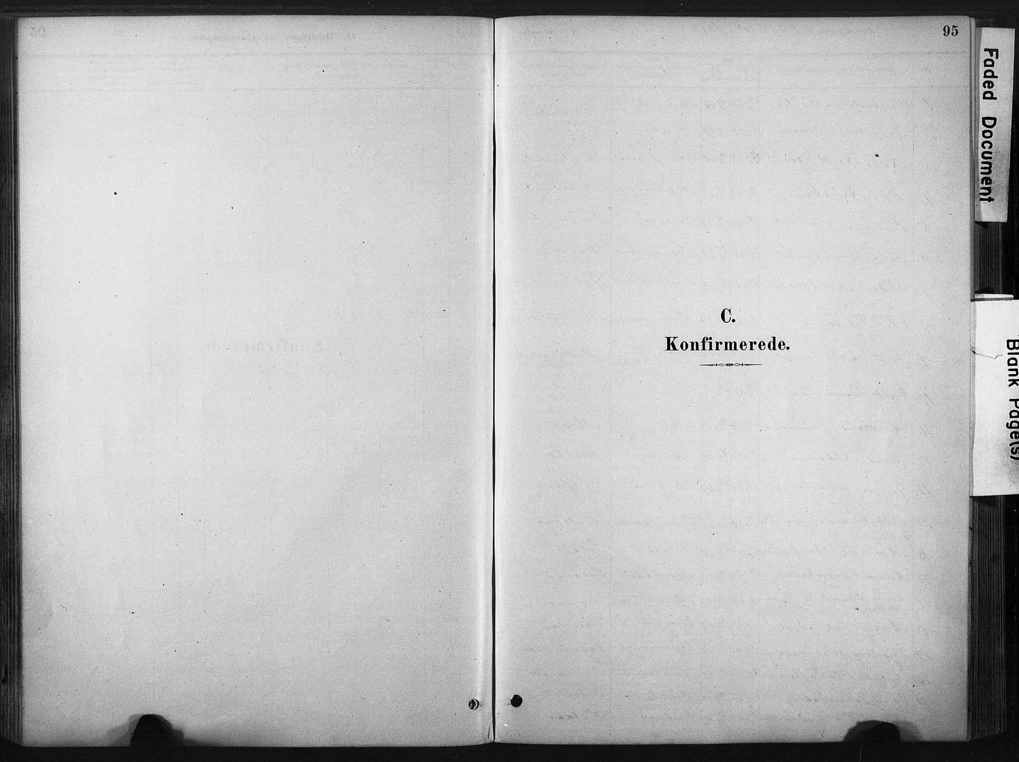 SAT, Ministerialprotokoller, klokkerbøker og fødselsregistre - Sør-Trøndelag, 667/L0795: Ministerialbok nr. 667A03, 1879-1907, s. 95