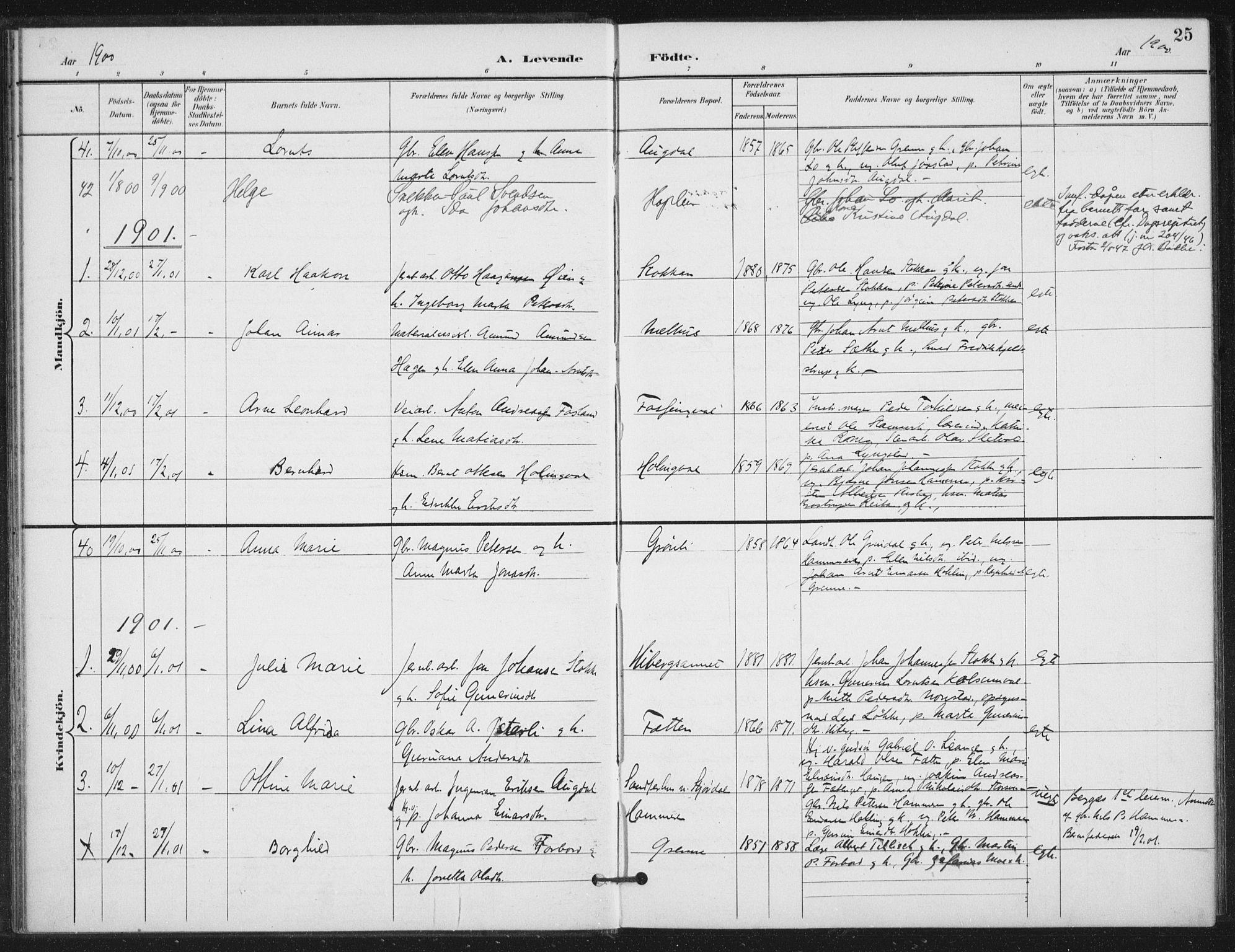 SAT, Ministerialprotokoller, klokkerbøker og fødselsregistre - Nord-Trøndelag, 714/L0131: Ministerialbok nr. 714A02, 1896-1918, s. 25