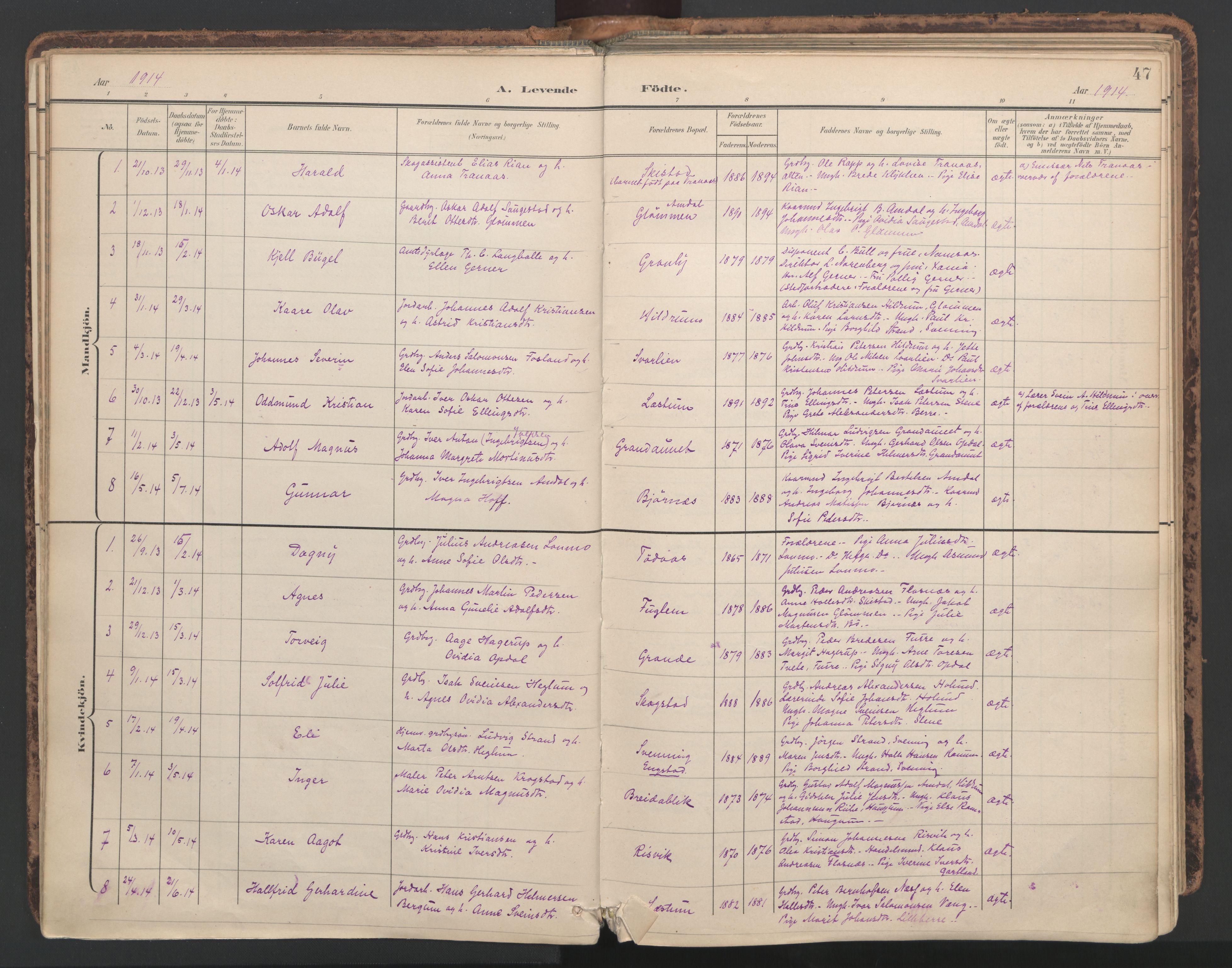 SAT, Ministerialprotokoller, klokkerbøker og fødselsregistre - Nord-Trøndelag, 764/L0556: Ministerialbok nr. 764A11, 1897-1924, s. 47