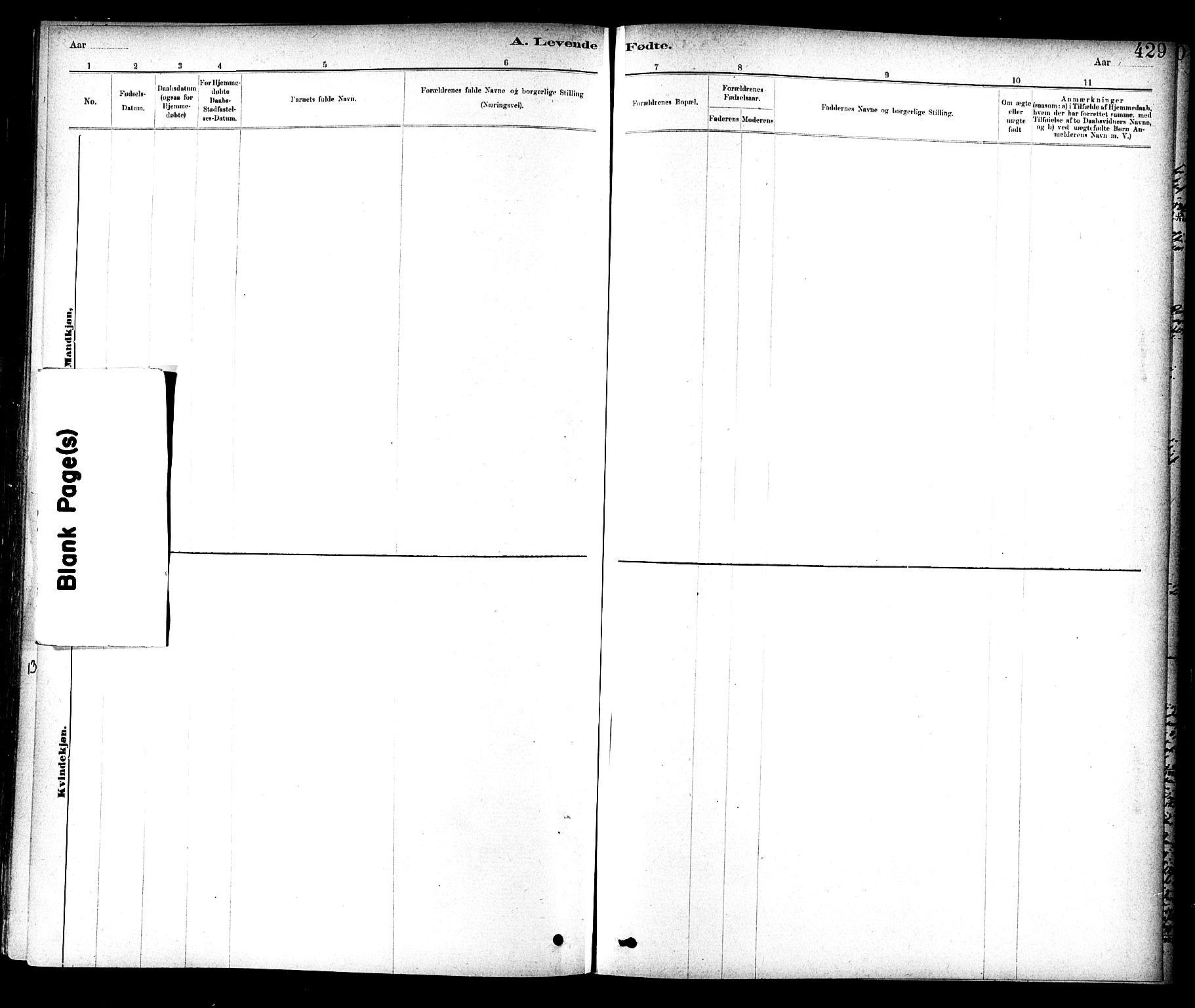 SAT, Ministerialprotokoller, klokkerbøker og fødselsregistre - Sør-Trøndelag, 604/L0188: Ministerialbok nr. 604A09, 1878-1892, s. 429