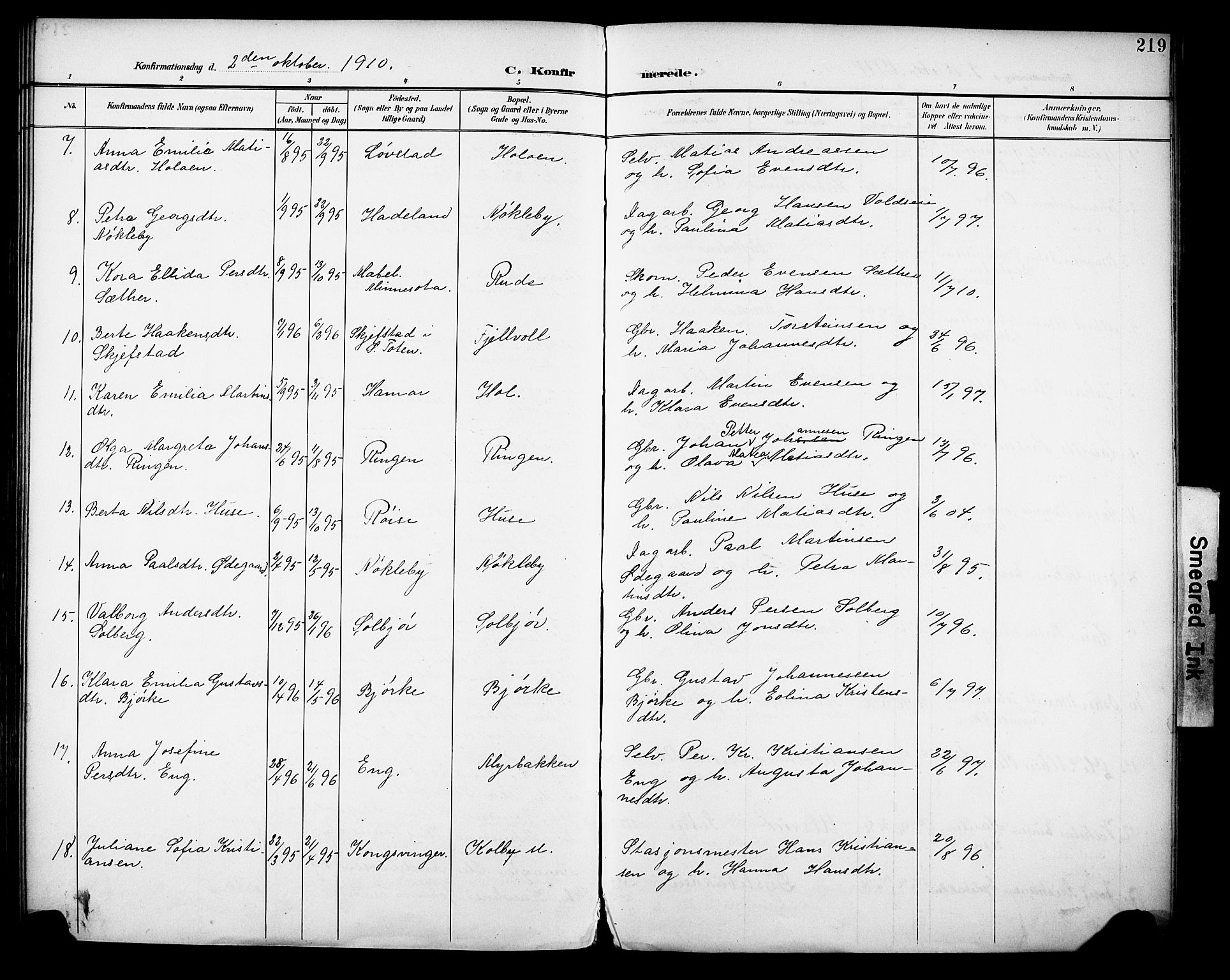 SAH, Vestre Toten prestekontor, H/Ha/Haa/L0013: Ministerialbok nr. 13, 1895-1911, s. 219