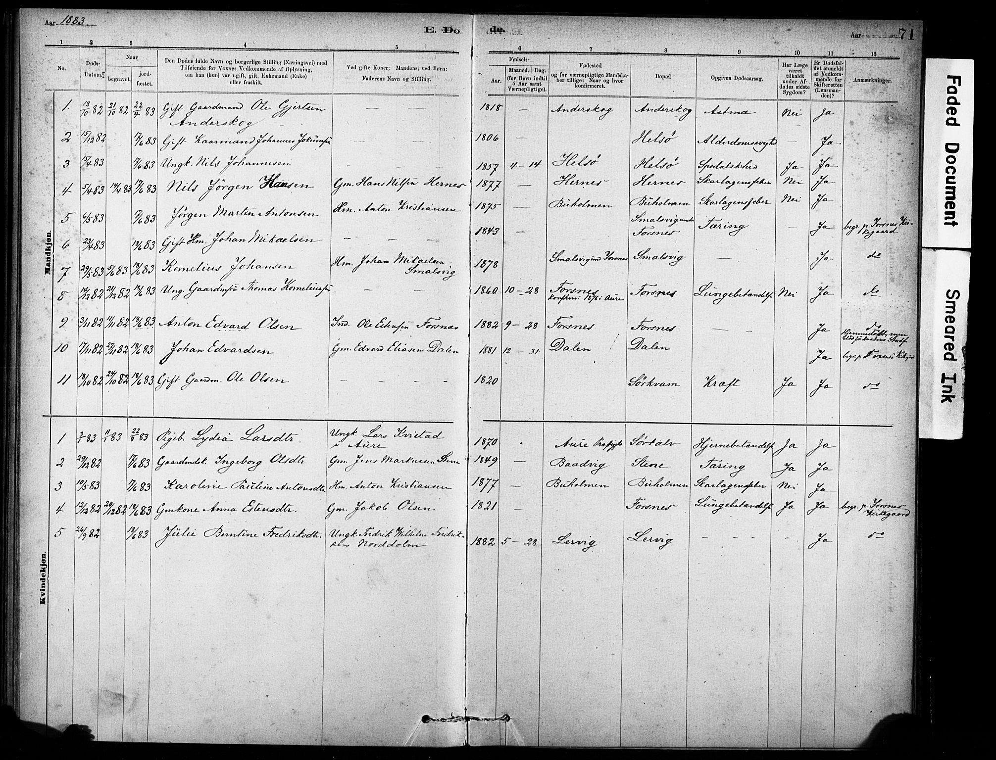 SAT, Ministerialprotokoller, klokkerbøker og fødselsregistre - Sør-Trøndelag, 635/L0551: Ministerialbok nr. 635A01, 1882-1899, s. 71