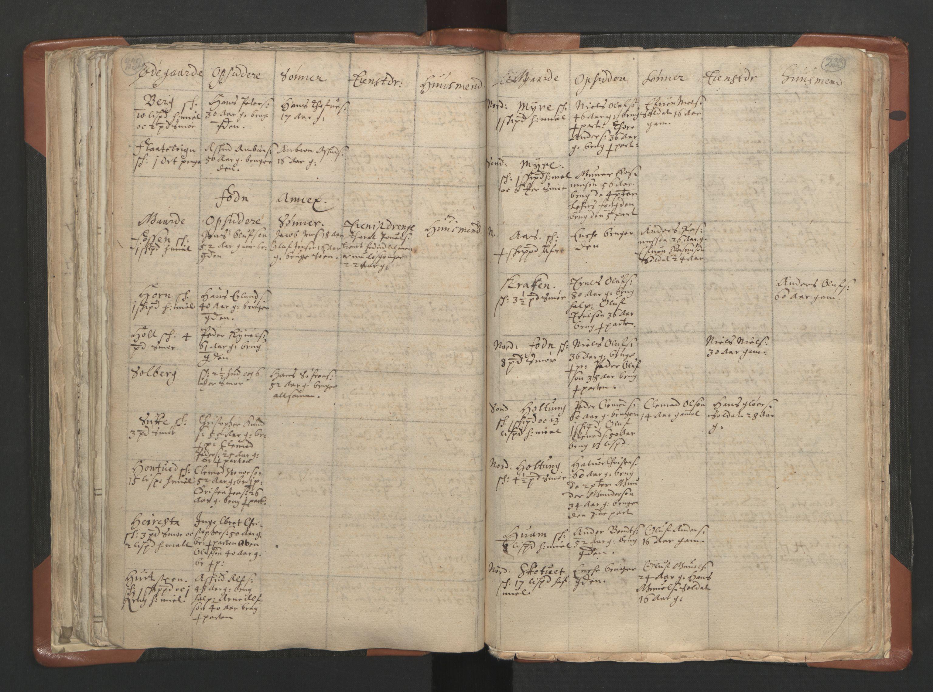 RA, Sogneprestenes manntall 1664-1666, nr. 10: Tønsberg prosti, 1664-1666, s. 232-233