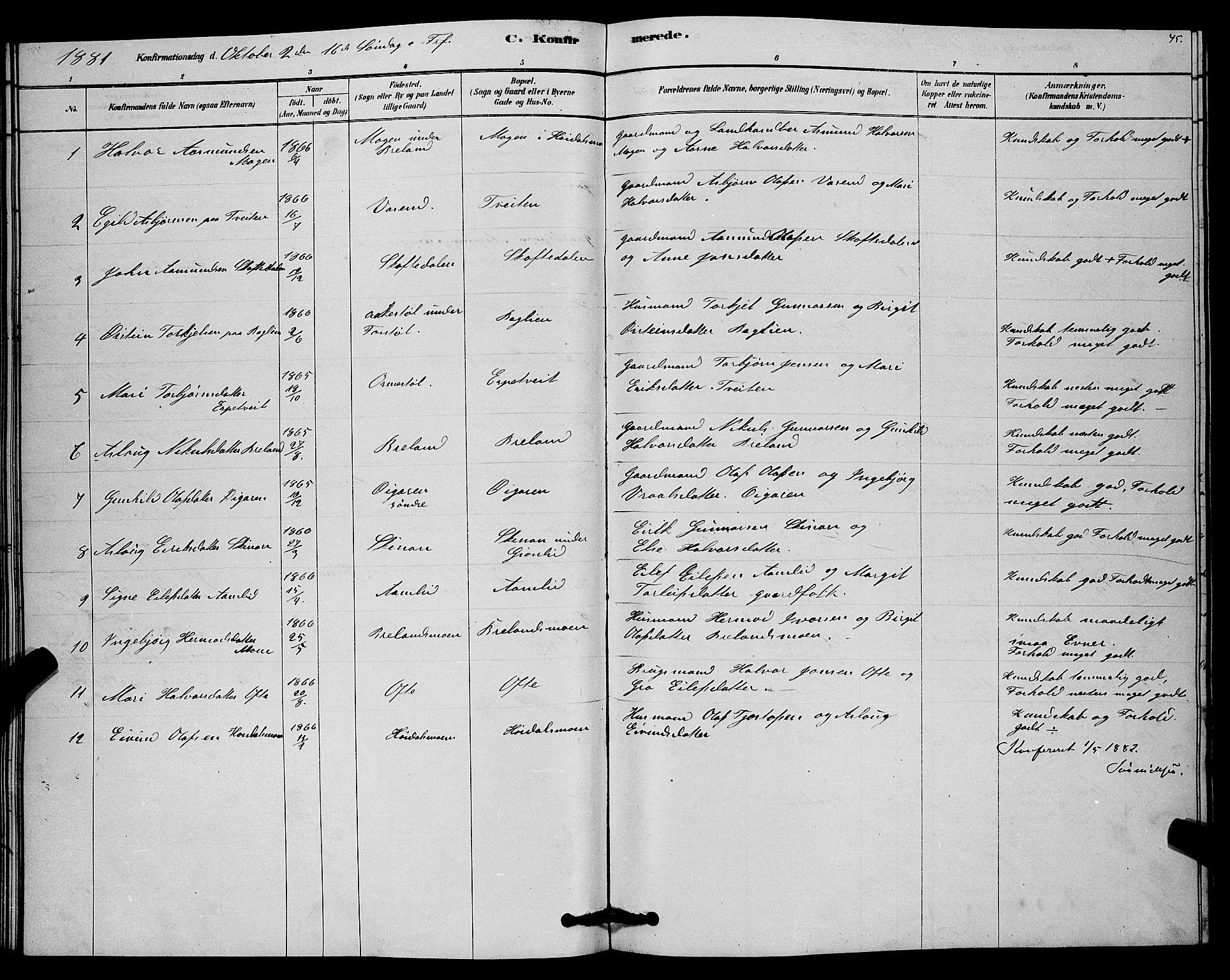 SAKO, Lårdal kirkebøker, G/Gc/L0003: Klokkerbok nr. III 3, 1878-1890, s. 45