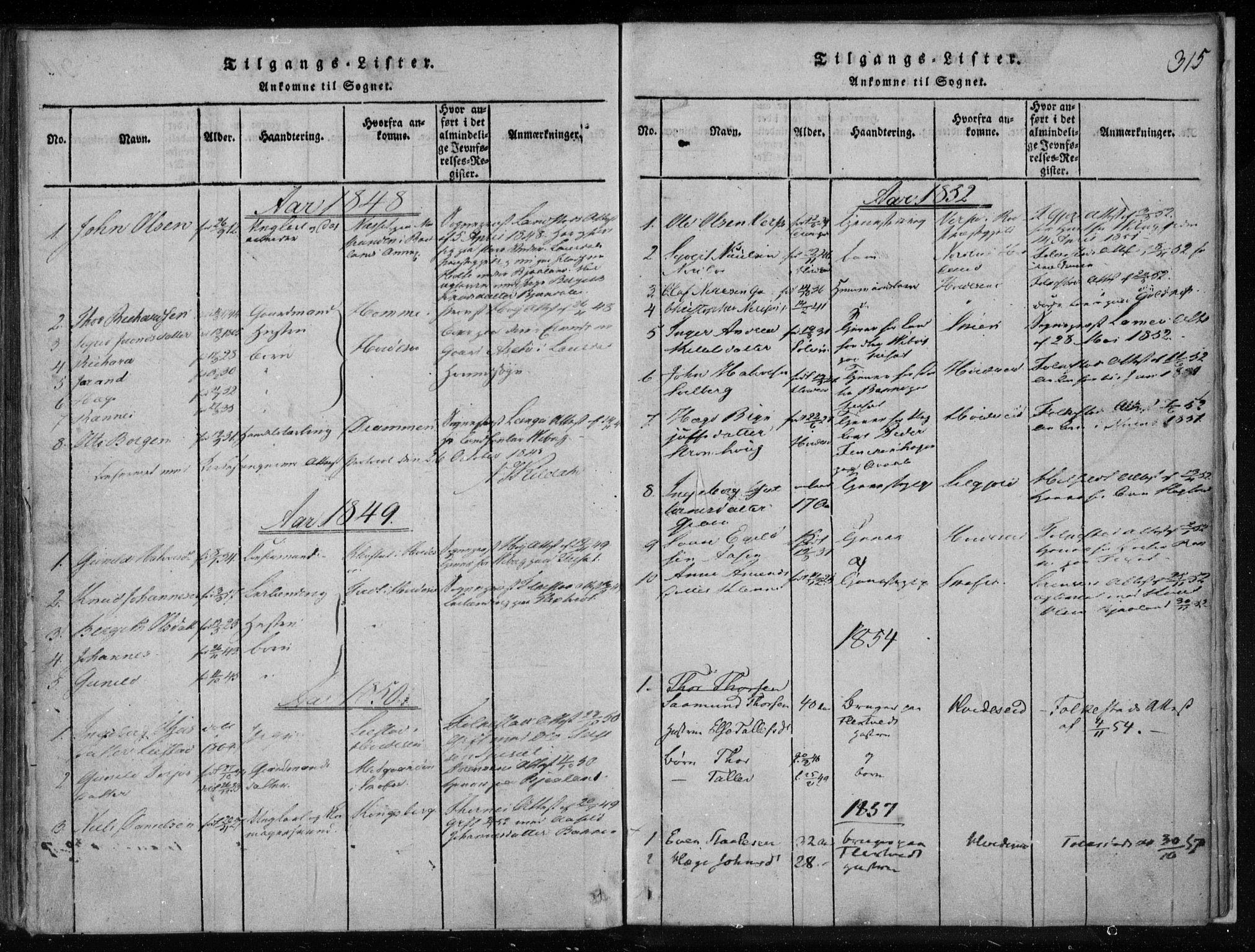 SAKO, Lårdal kirkebøker, F/Fa/L0005: Ministerialbok nr. I 5, 1815-1860, s. 315