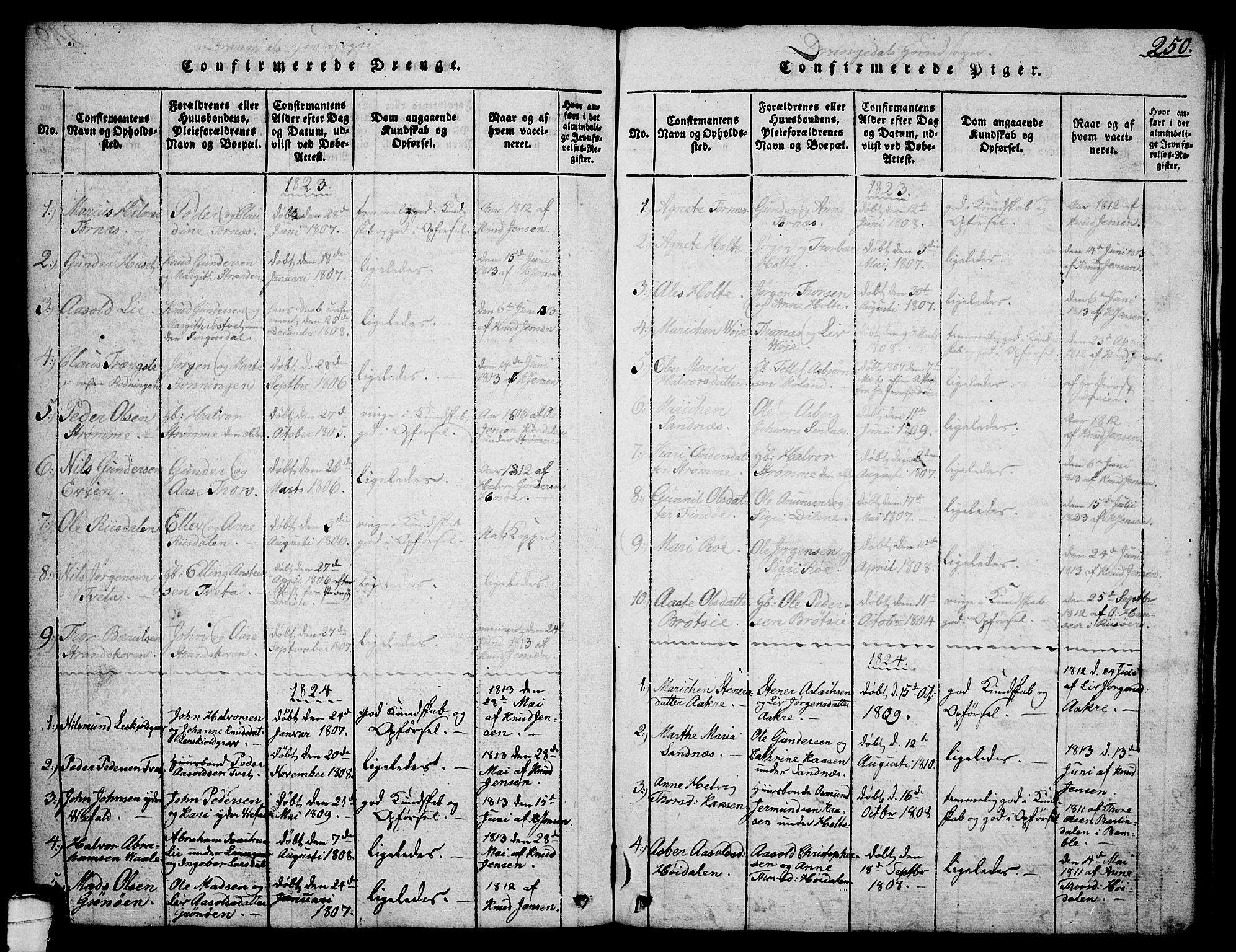 SAKO, Drangedal kirkebøker, G/Ga/L0001: Klokkerbok nr. I 1 /1, 1814-1856, s. 250