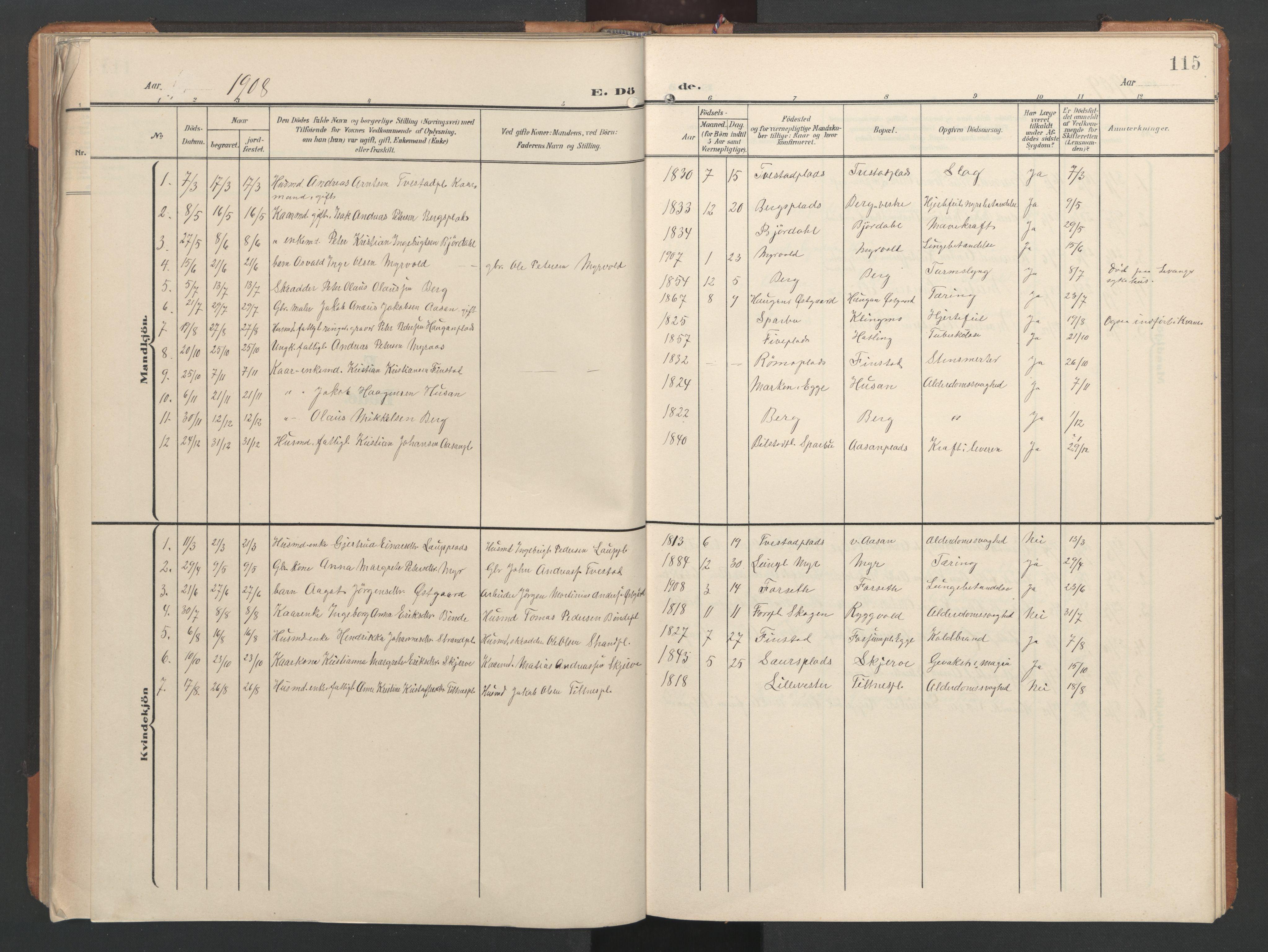 SAT, Ministerialprotokoller, klokkerbøker og fødselsregistre - Nord-Trøndelag, 746/L0455: Klokkerbok nr. 746C01, 1908-1933, s. 115