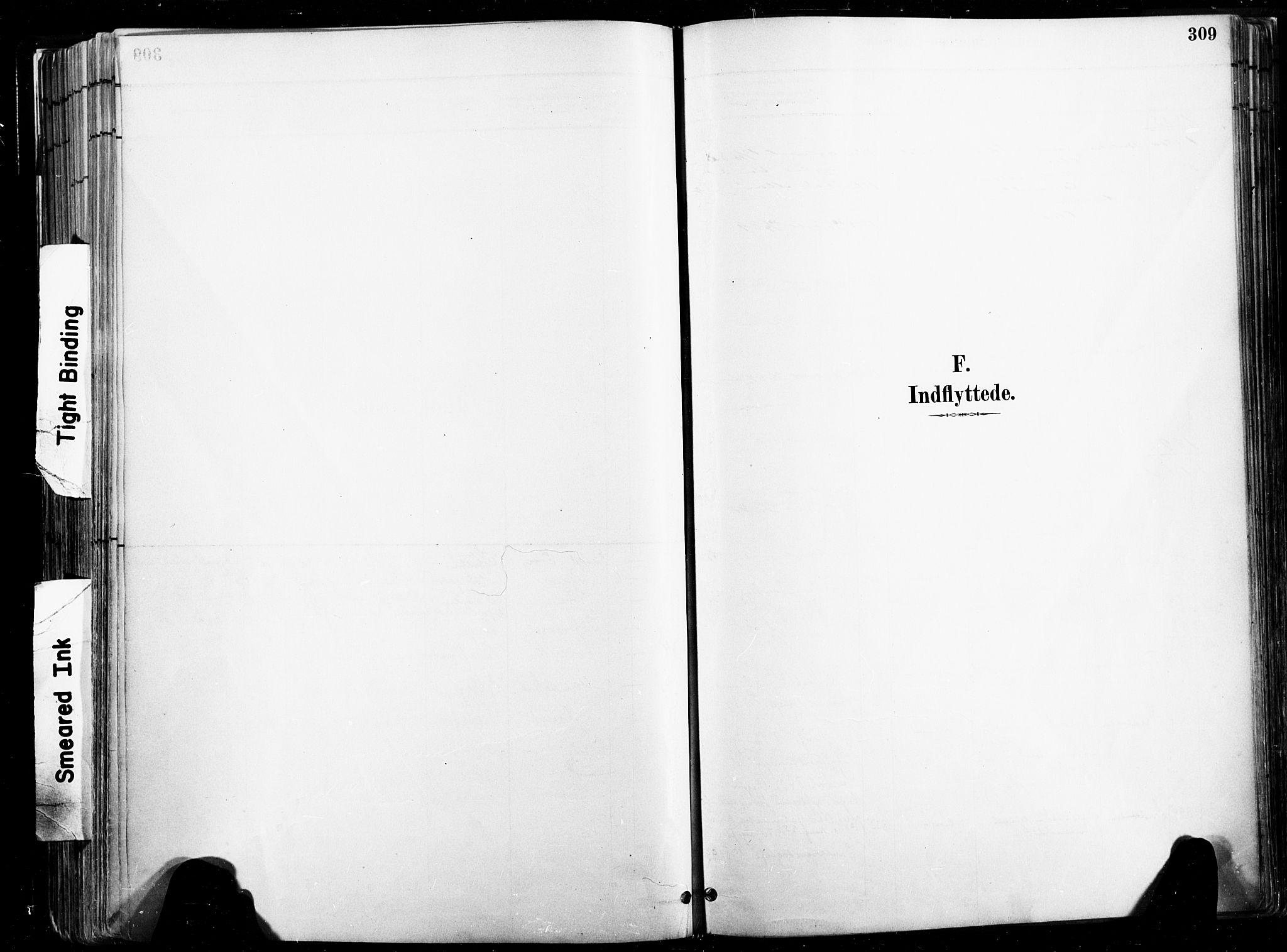 SAT, Ministerialprotokoller, klokkerbøker og fødselsregistre - Nord-Trøndelag, 735/L0351: Ministerialbok nr. 735A10, 1884-1908, s. 309