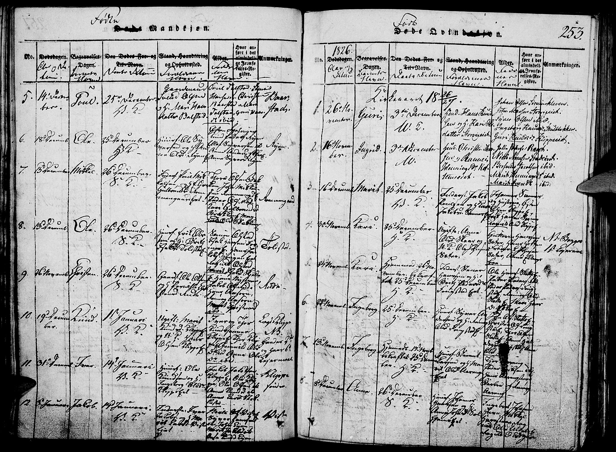 SAH, Vågå prestekontor, Klokkerbok nr. 1, 1815-1827, s. 252-253