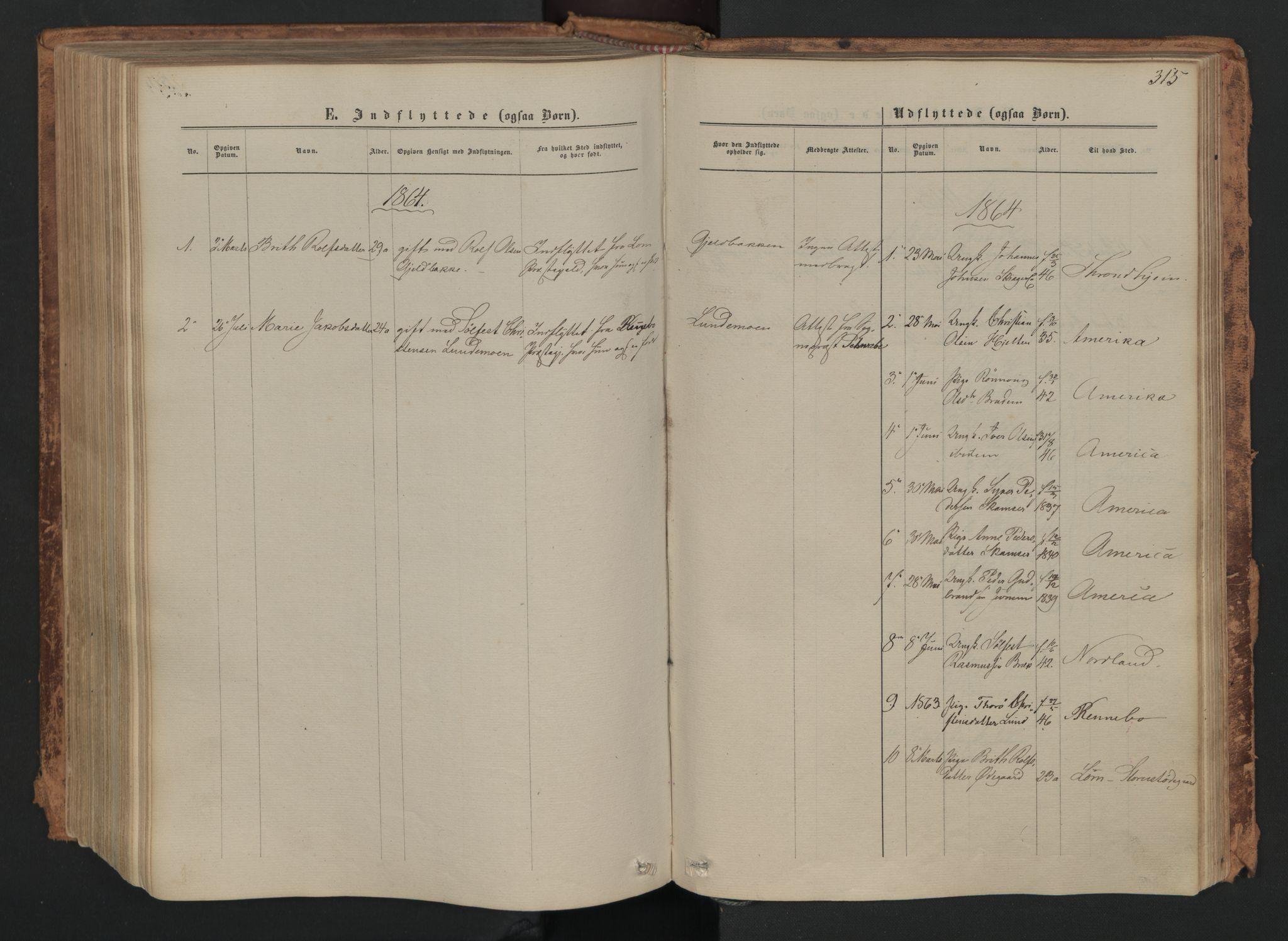 SAH, Skjåk prestekontor, Ministerialbok nr. 1, 1863-1879, s. 315