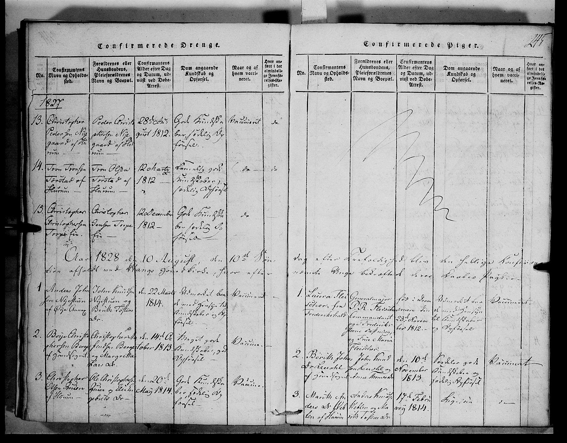 SAH, Vang prestekontor, Valdres, Klokkerbok nr. 1, 1814-1820, s. 245