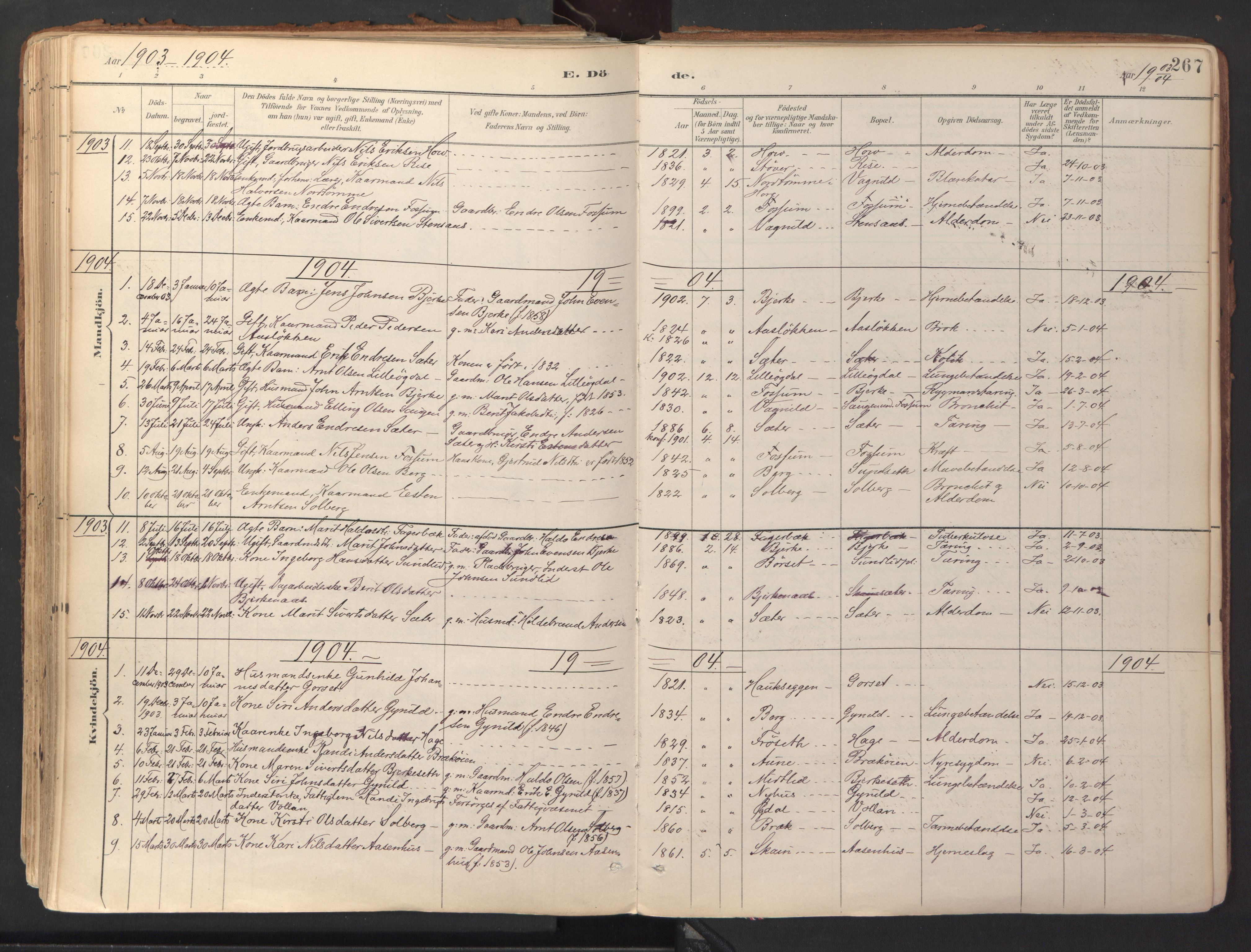 SAT, Ministerialprotokoller, klokkerbøker og fødselsregistre - Sør-Trøndelag, 689/L1041: Ministerialbok nr. 689A06, 1891-1923, s. 267