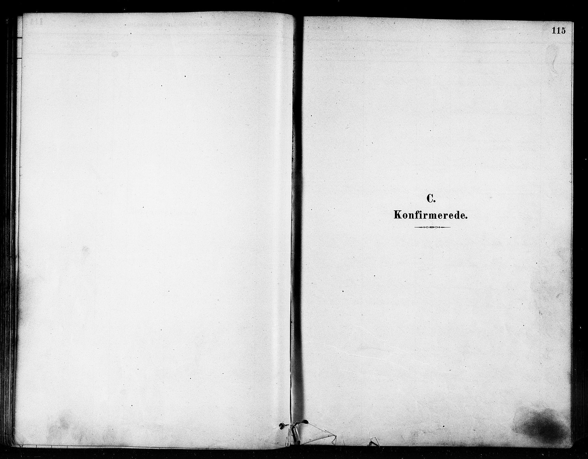 SATØ, Vardø sokneprestkontor, H/Ha/L0006kirke: Ministerialbok nr. 6, 1879-1886, s. 115