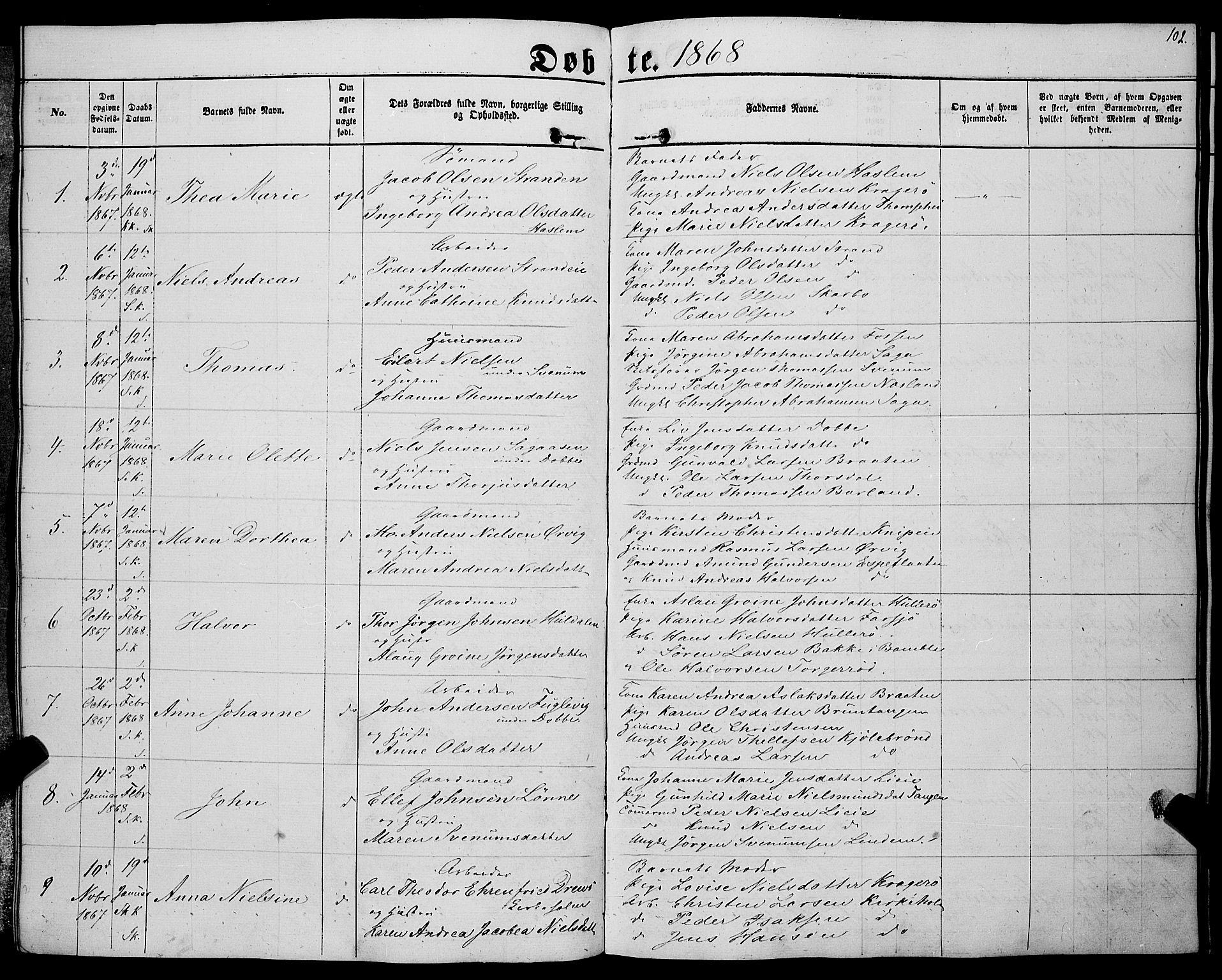 SAKO, Sannidal kirkebøker, F/Fa/L0011: Ministerialbok nr. 11, 1863-1873, s. 102