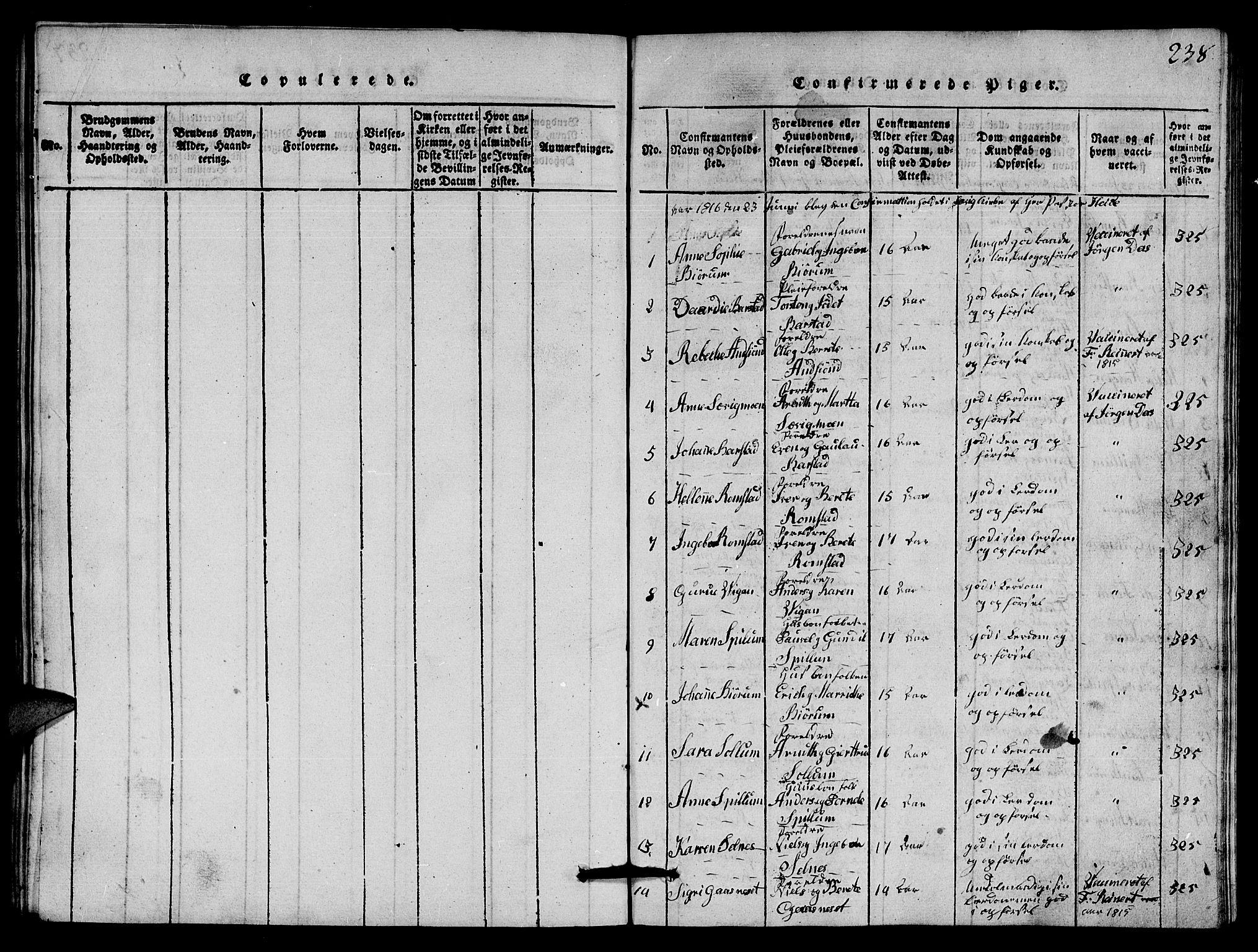 SAT, Ministerialprotokoller, klokkerbøker og fødselsregistre - Nord-Trøndelag, 770/L0590: Klokkerbok nr. 770C01, 1815-1824, s. 238
