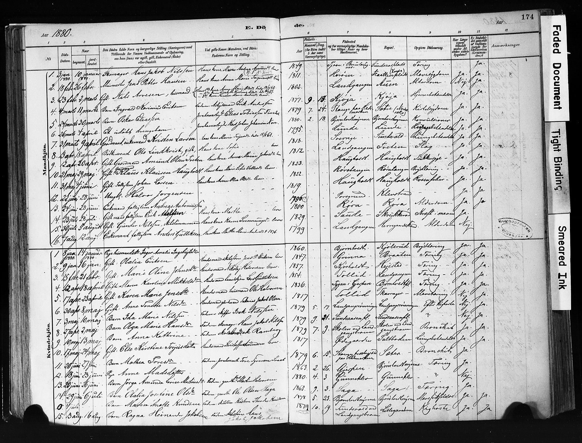 SAKO, Eidanger kirkebøker, F/Fa/L0012: Ministerialbok nr. 12, 1879-1900, s. 174
