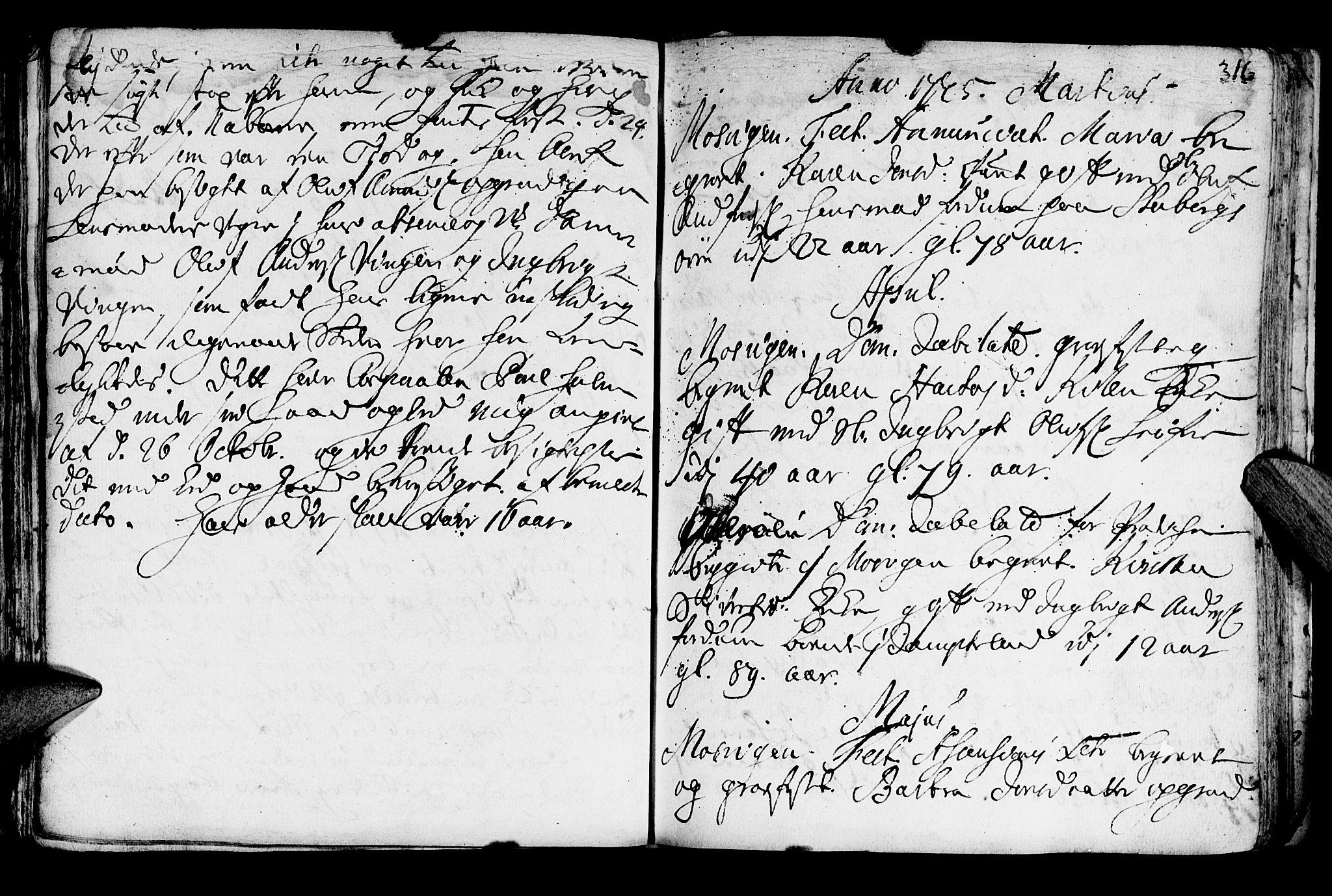 SAT, Ministerialprotokoller, klokkerbøker og fødselsregistre - Nord-Trøndelag, 722/L0215: Ministerialbok nr. 722A02, 1718-1755, s. 316
