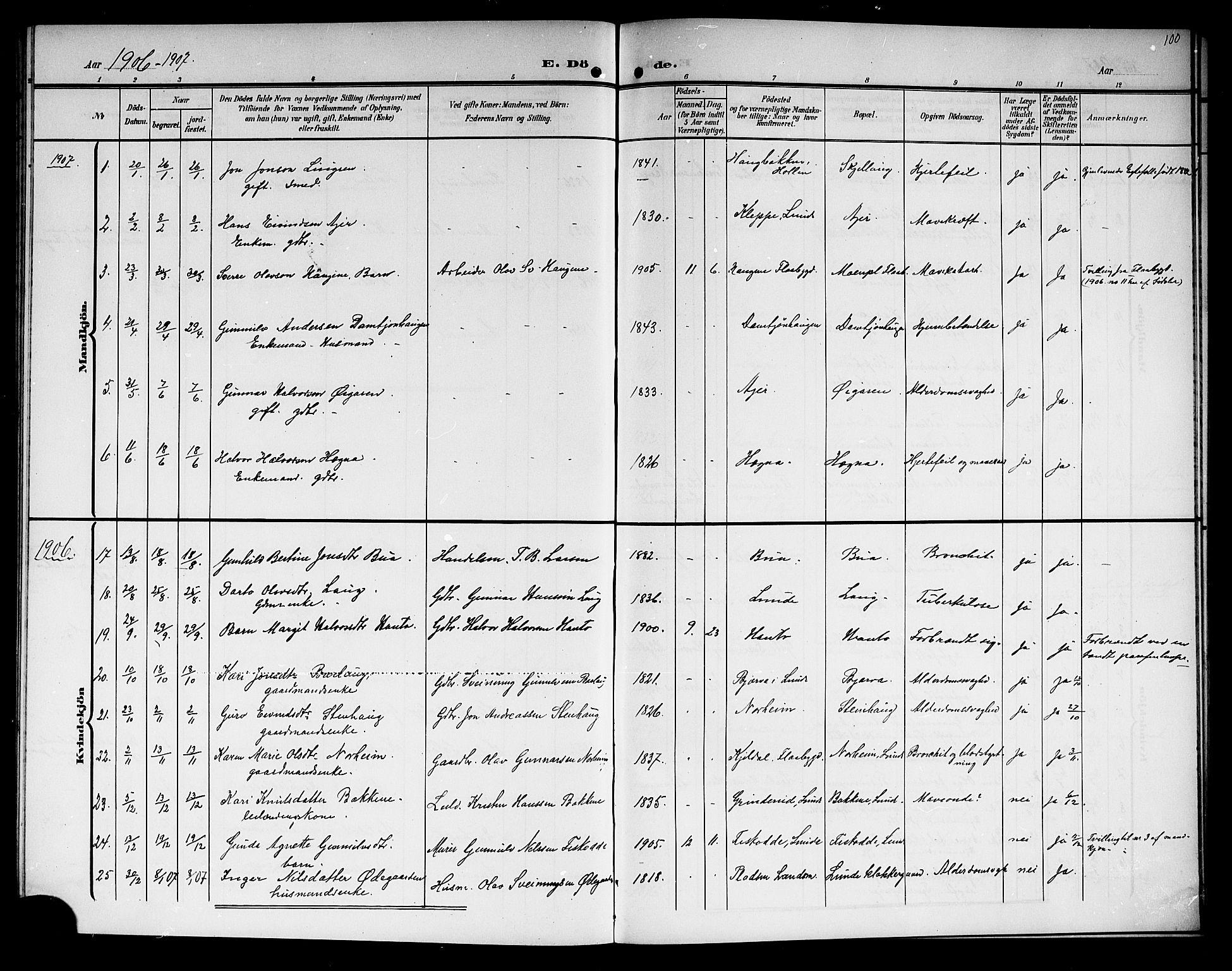 SAKO, Lunde kirkebøker, G/Ga/L0004: Klokkerbok nr. I 4, 1906-1914, s. 100