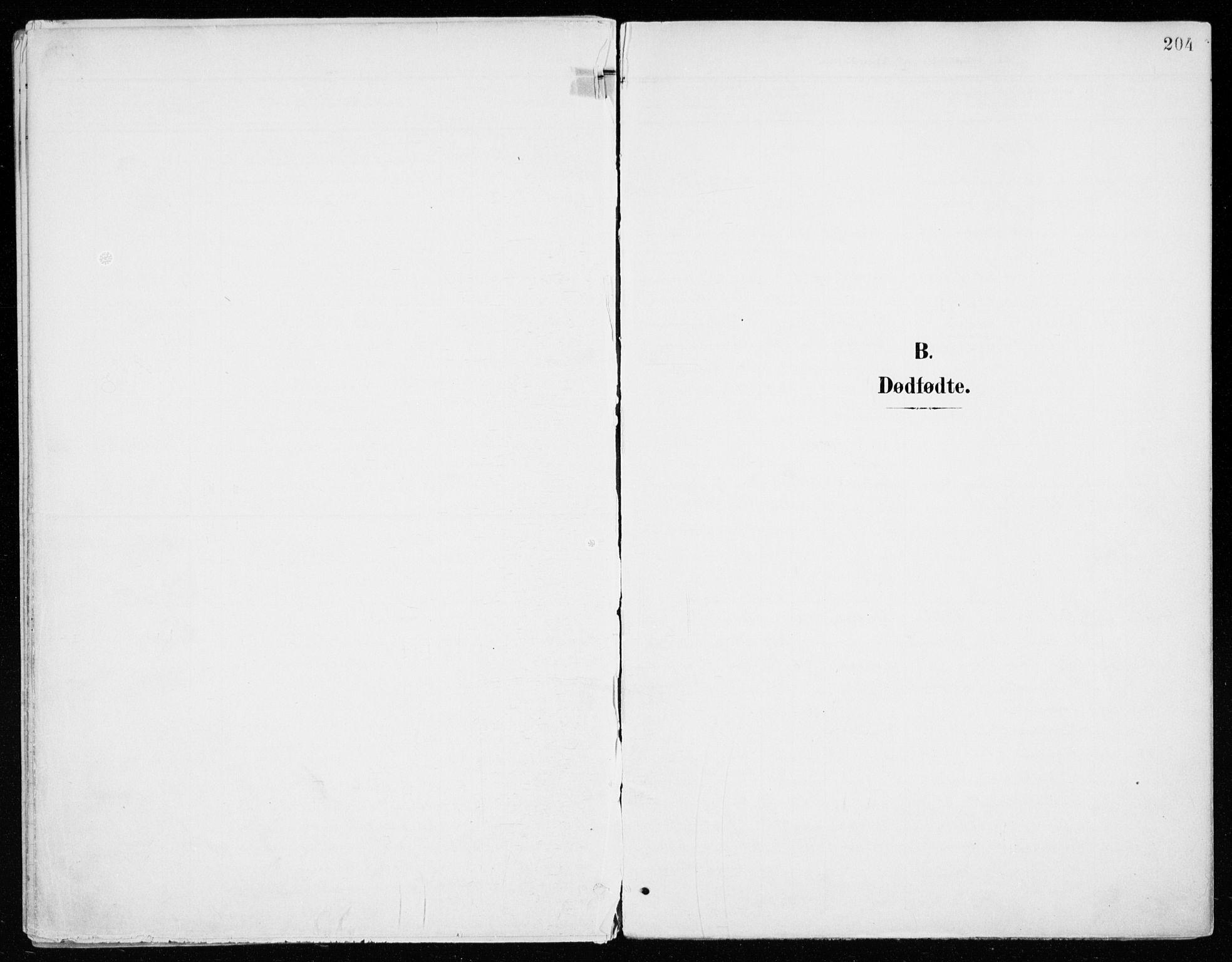 SAH, Vang prestekontor, Hedmark, H/Ha/Haa/L0021: Ministerialbok nr. 21, 1902-1917, s. 204