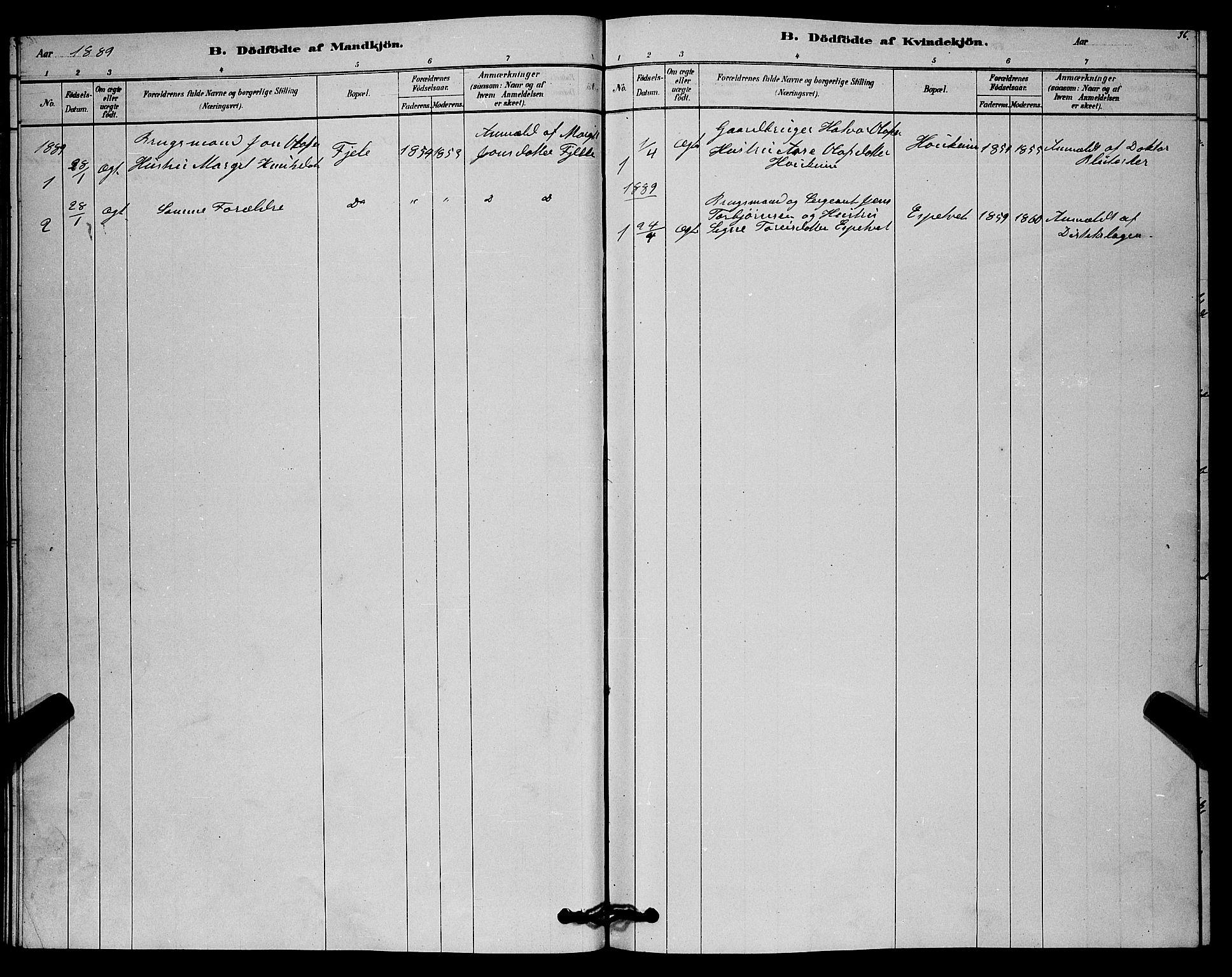 SAKO, Lårdal kirkebøker, G/Gc/L0003: Klokkerbok nr. III 3, 1878-1890, s. 36