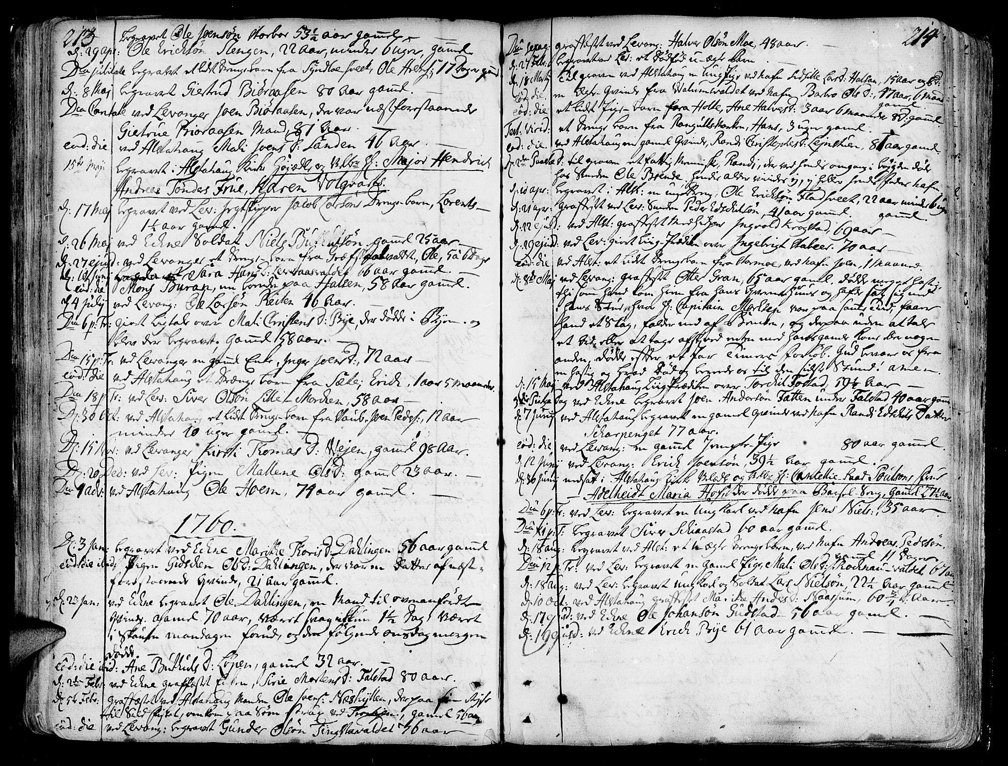 SAT, Ministerialprotokoller, klokkerbøker og fødselsregistre - Nord-Trøndelag, 717/L0141: Ministerialbok nr. 717A01, 1747-1803, s. 213-214