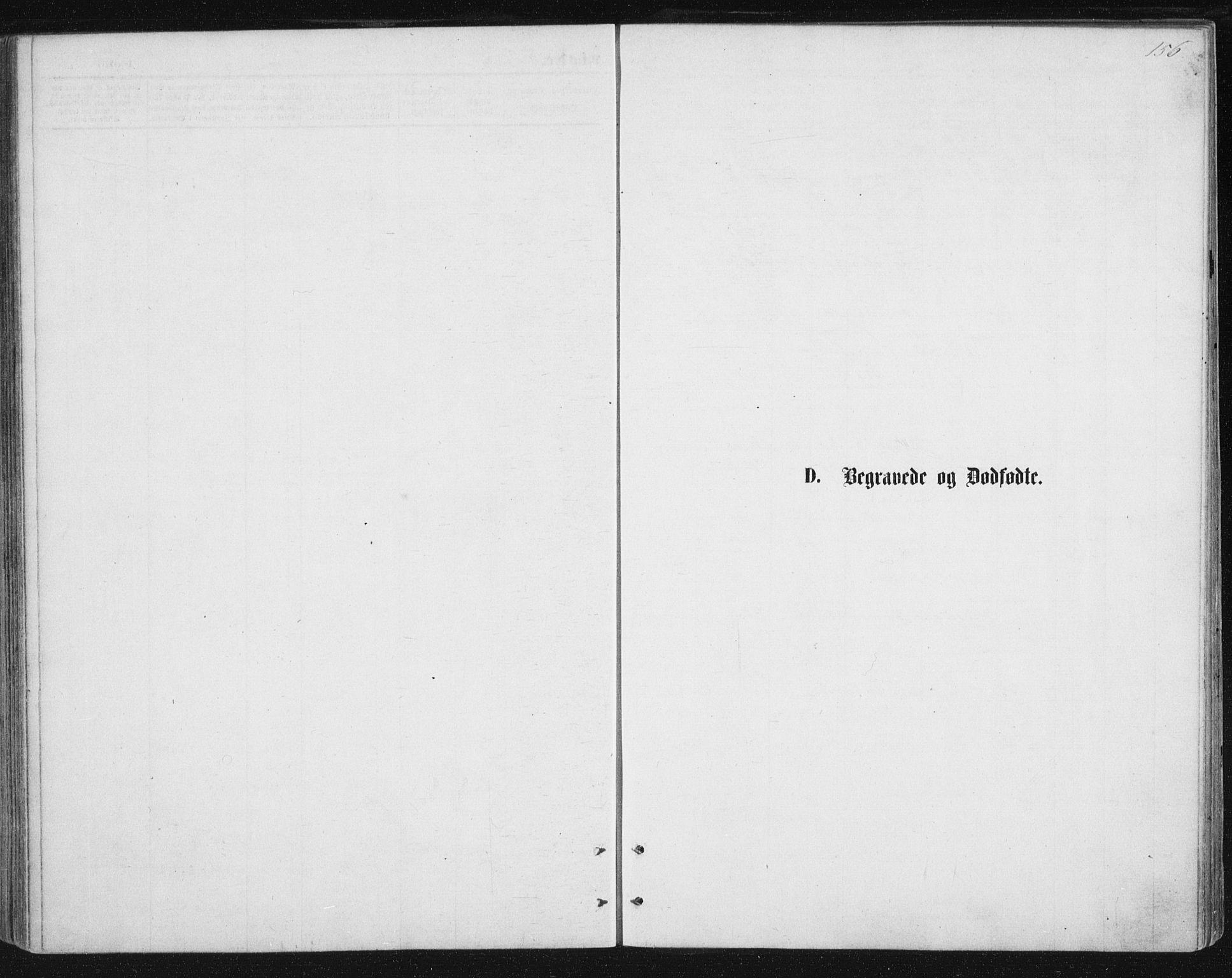 SAT, Ministerialprotokoller, klokkerbøker og fødselsregistre - Nordland, 888/L1243: Ministerialbok nr. 888A09, 1876-1879, s. 156