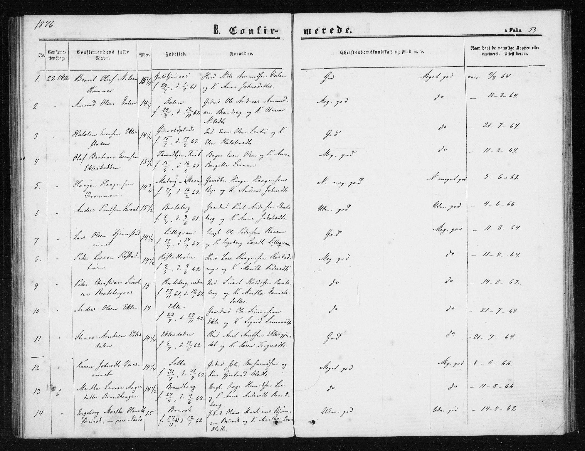 SAT, Ministerialprotokoller, klokkerbøker og fødselsregistre - Sør-Trøndelag, 608/L0333: Ministerialbok nr. 608A02, 1862-1876, s. 53