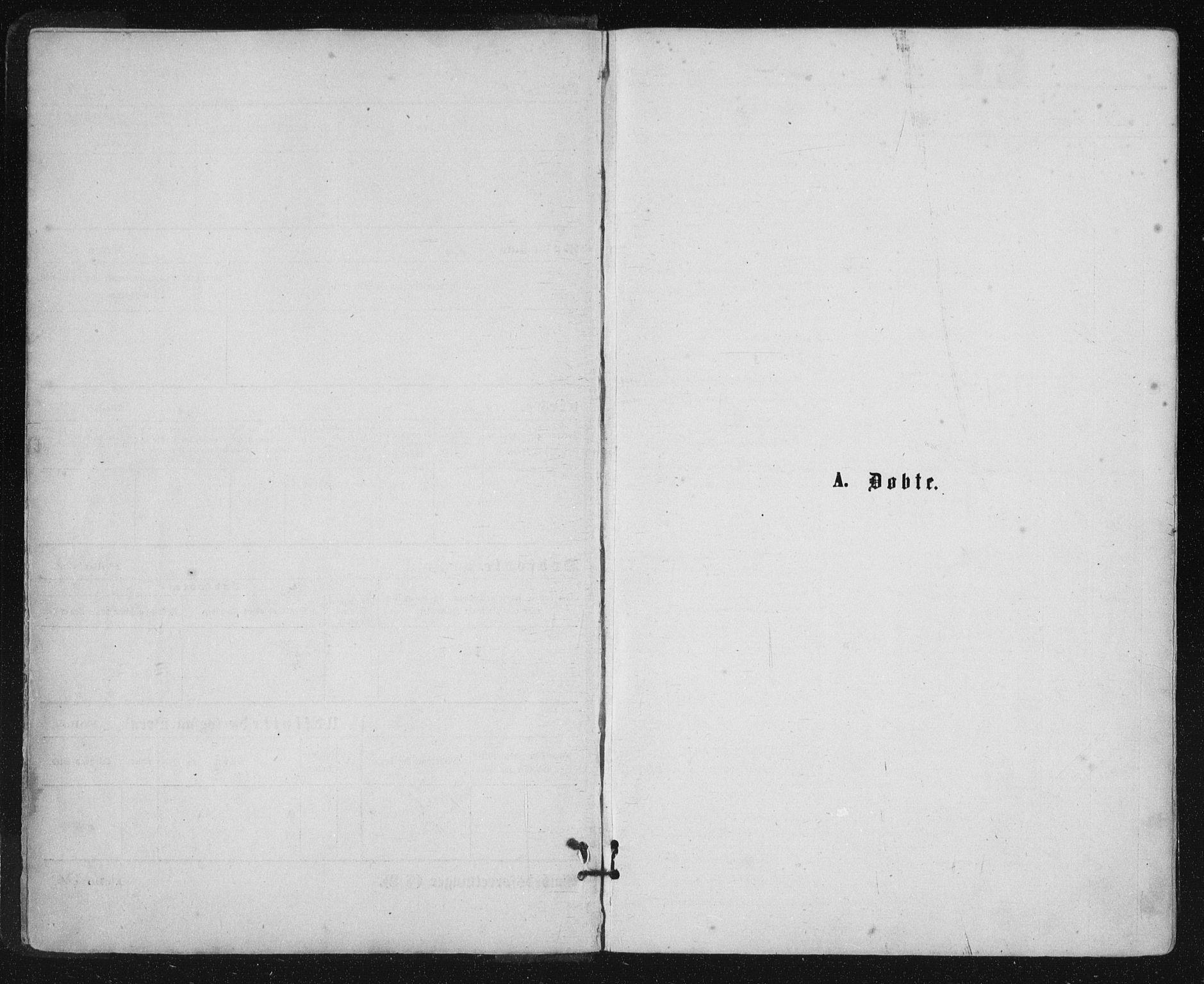 SAT, Ministerialprotokoller, klokkerbøker og fødselsregistre - Nordland, 816/L0241: Ministerialbok nr. 816A07, 1870-1885