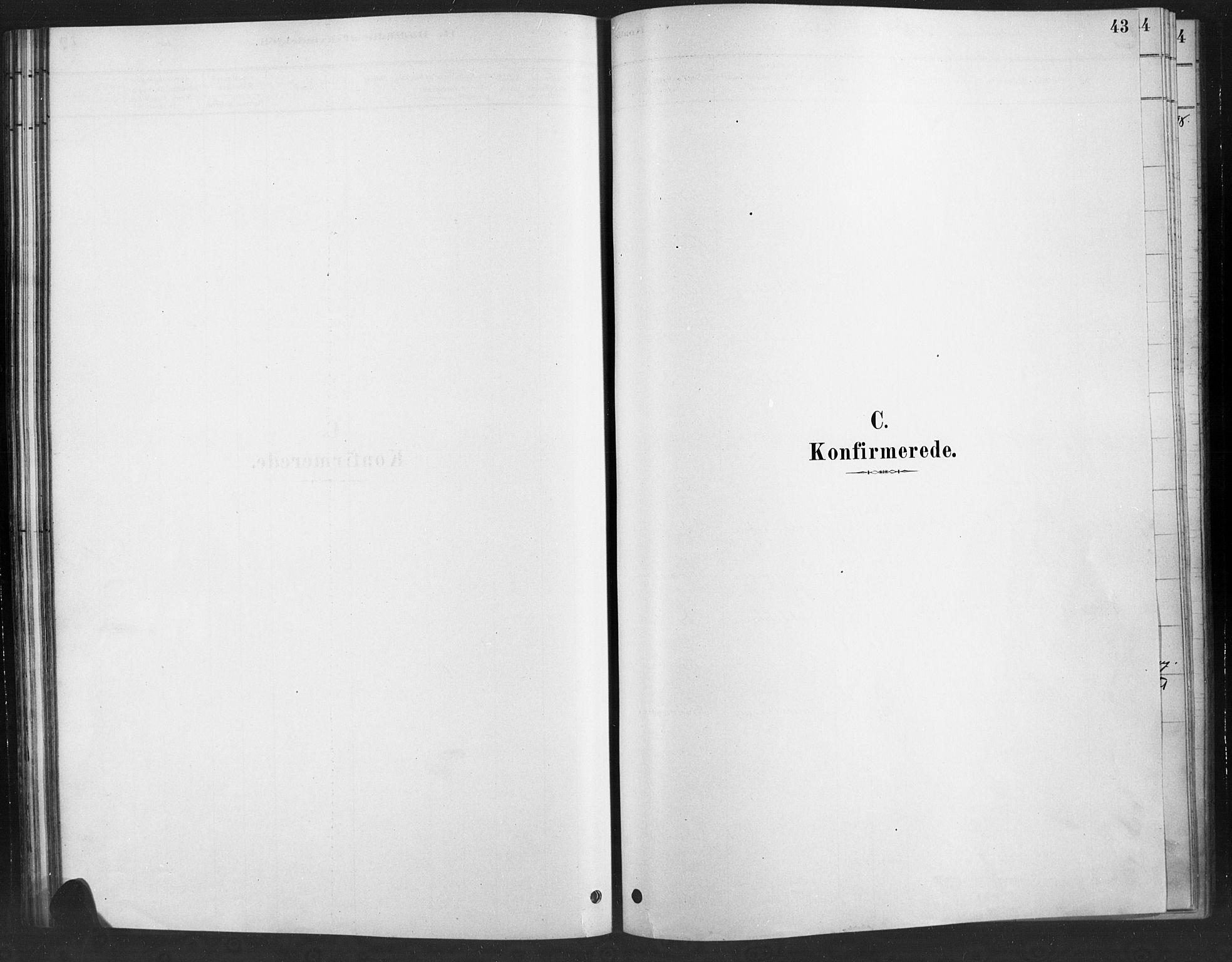 SAH, Ringebu prestekontor, Ministerialbok nr. 10, 1878-1898, s. 43