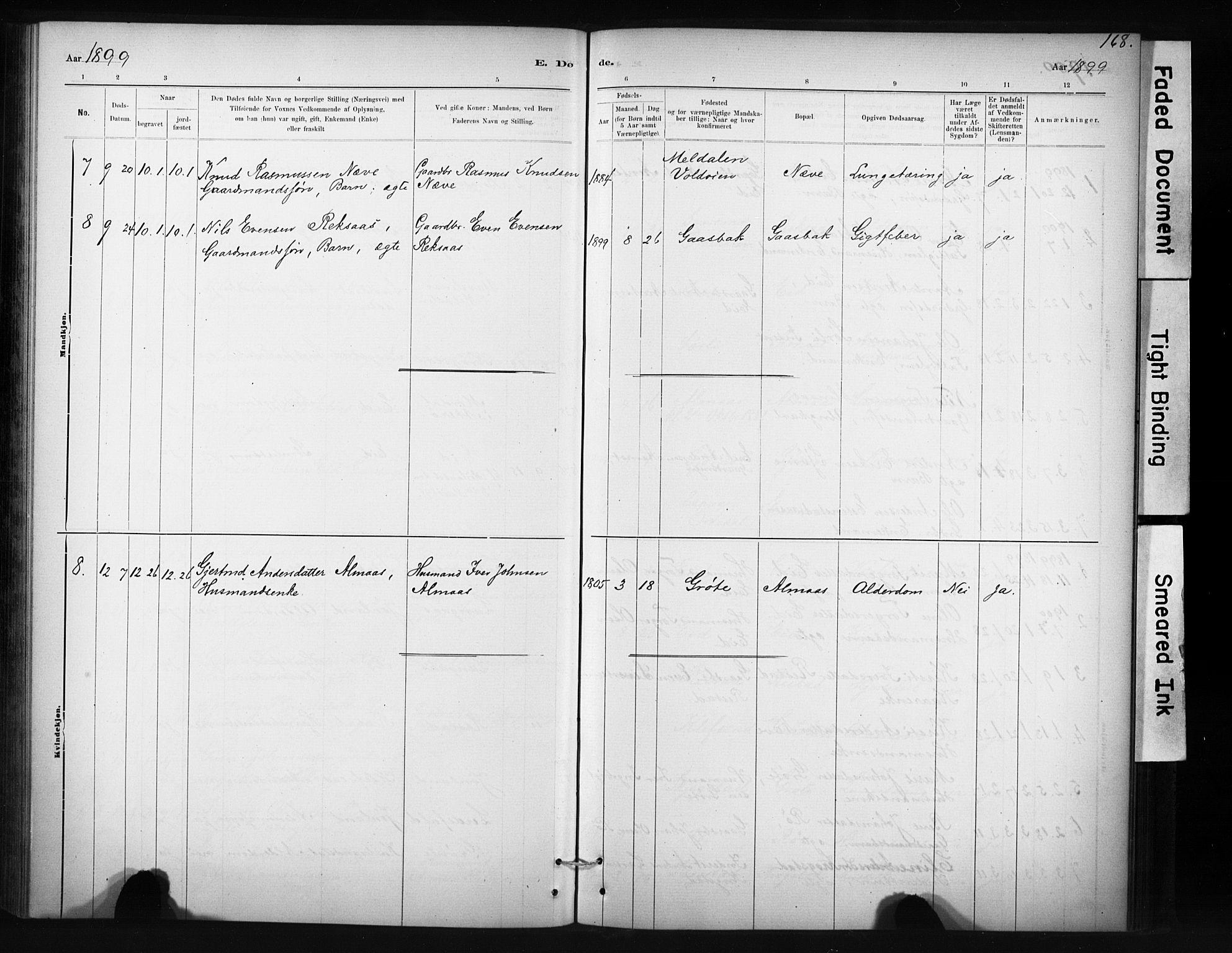 SAT, Ministerialprotokoller, klokkerbøker og fødselsregistre - Sør-Trøndelag, 694/L1127: Ministerialbok nr. 694A01, 1887-1905, s. 168