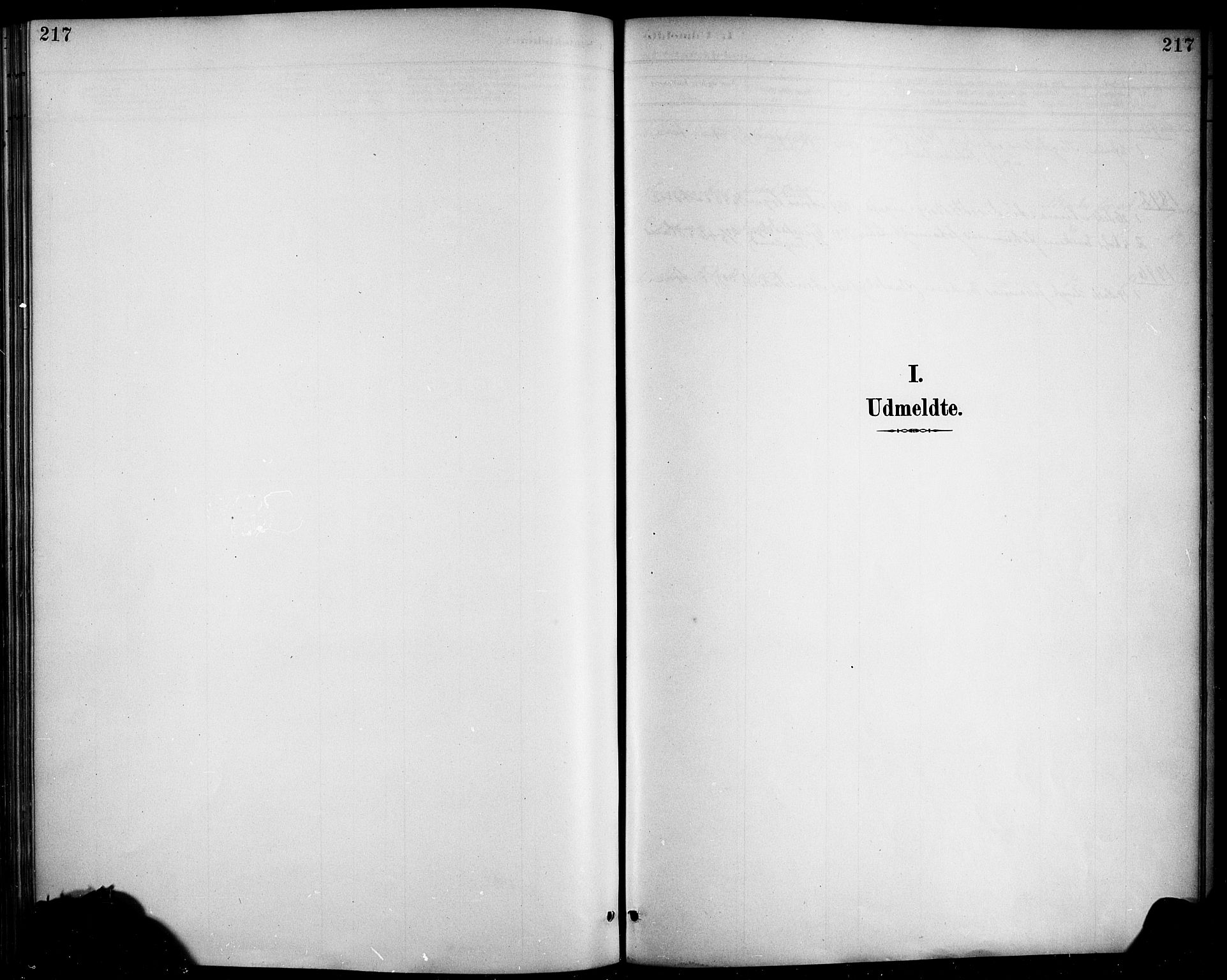 SAB, Haus sokneprestembete, H/Haa: Ministerialbok nr. D 1, 1887-1898, s. 217