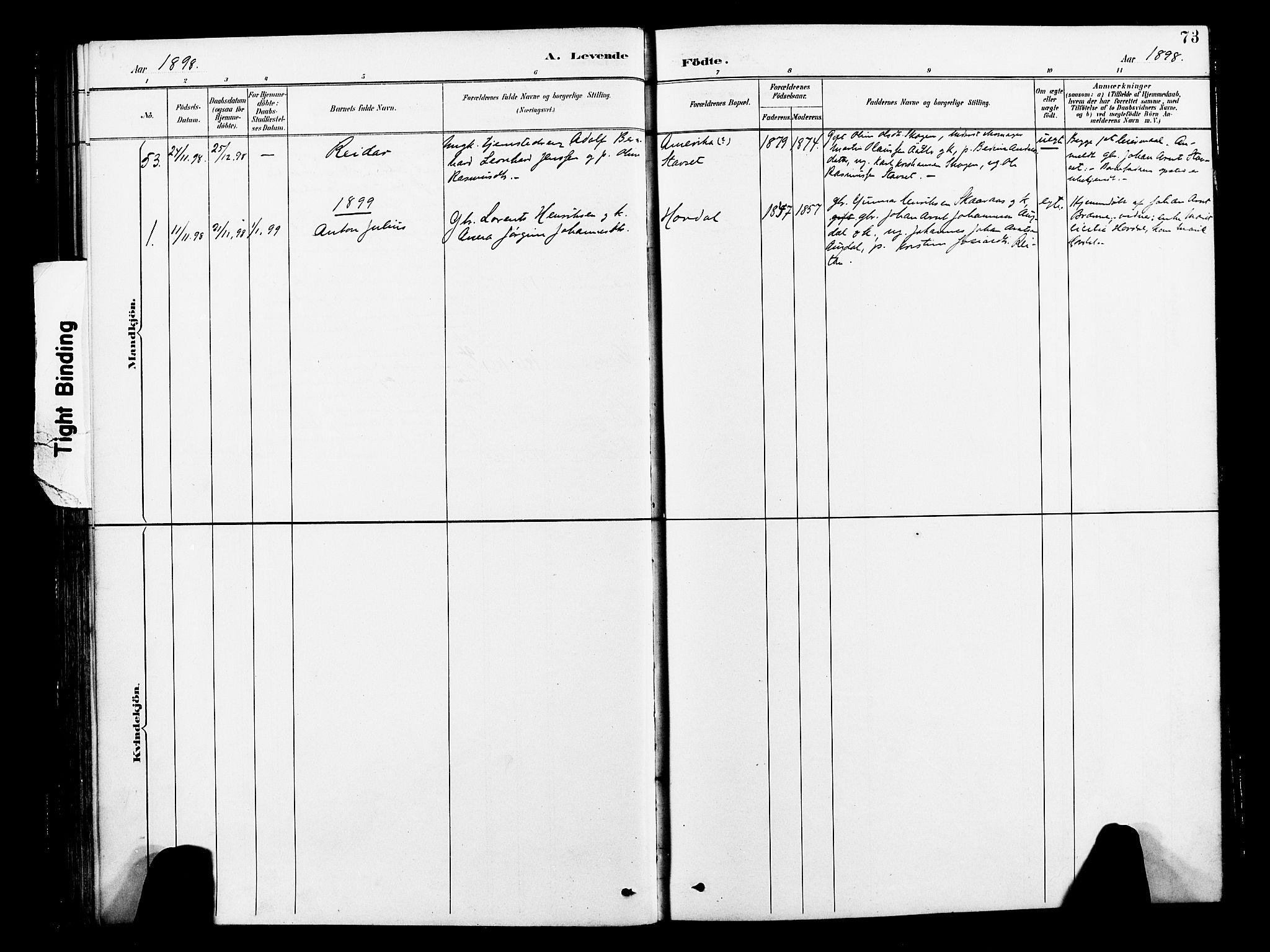 SAT, Ministerialprotokoller, klokkerbøker og fødselsregistre - Nord-Trøndelag, 713/L0121: Ministerialbok nr. 713A10, 1888-1898, s. 73