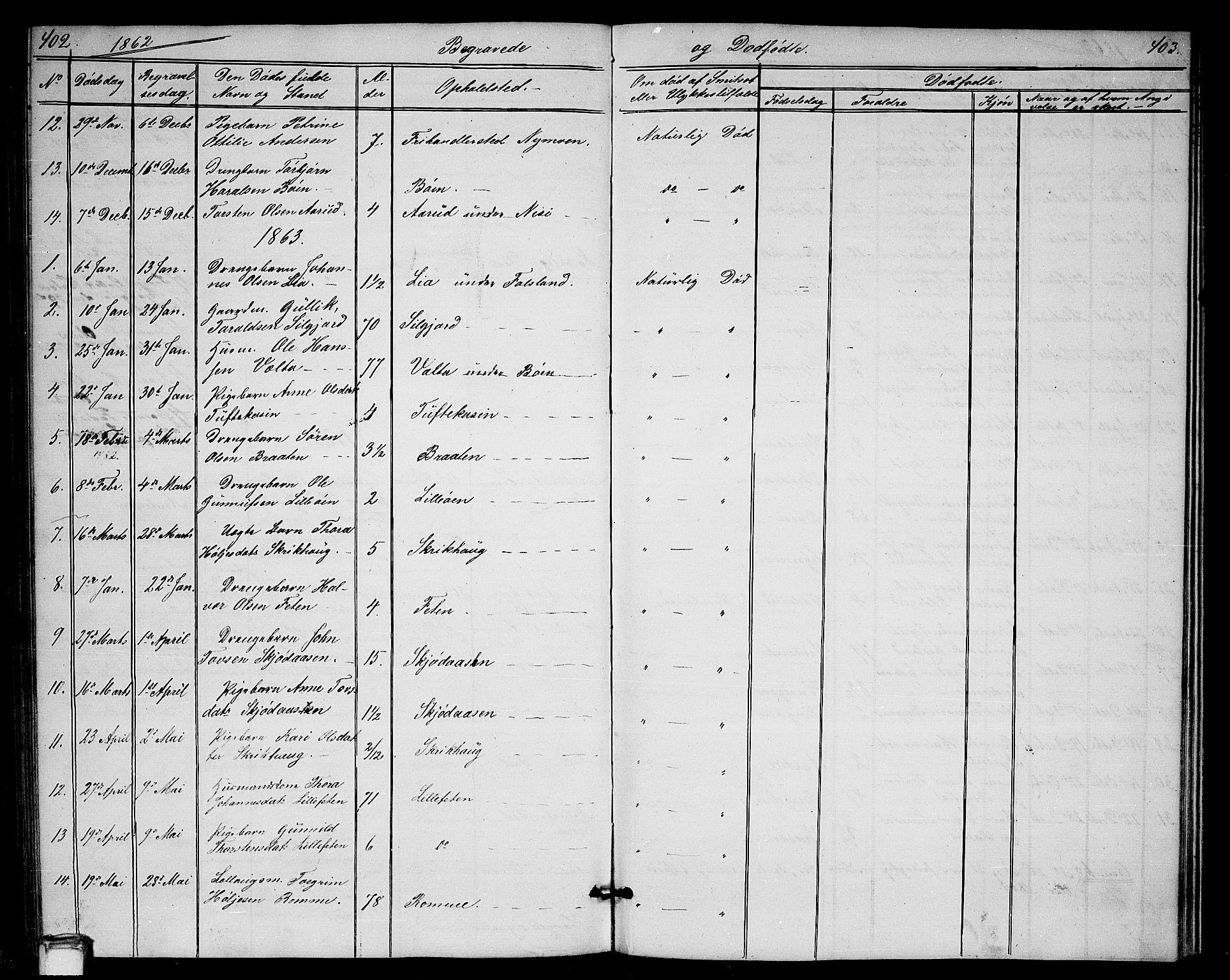 SAKO, Gransherad kirkebøker, G/Ga/L0002: Klokkerbok nr. I 2, 1854-1886, s. 402-403