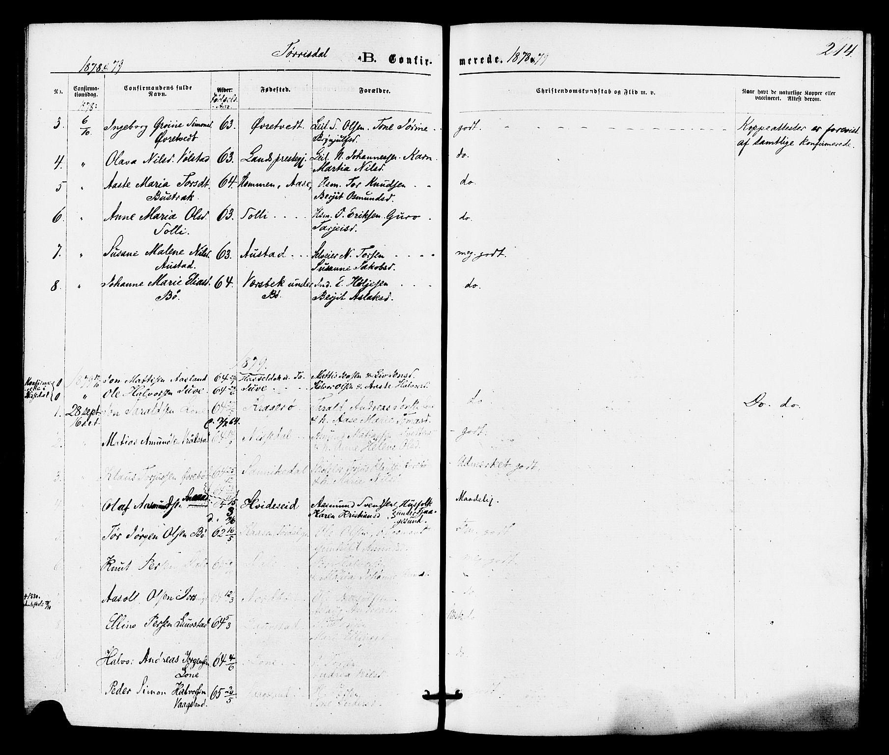 SAKO, Drangedal kirkebøker, F/Fa/L0009: Ministerialbok nr. 9 /2, 1872-1884, s. 214