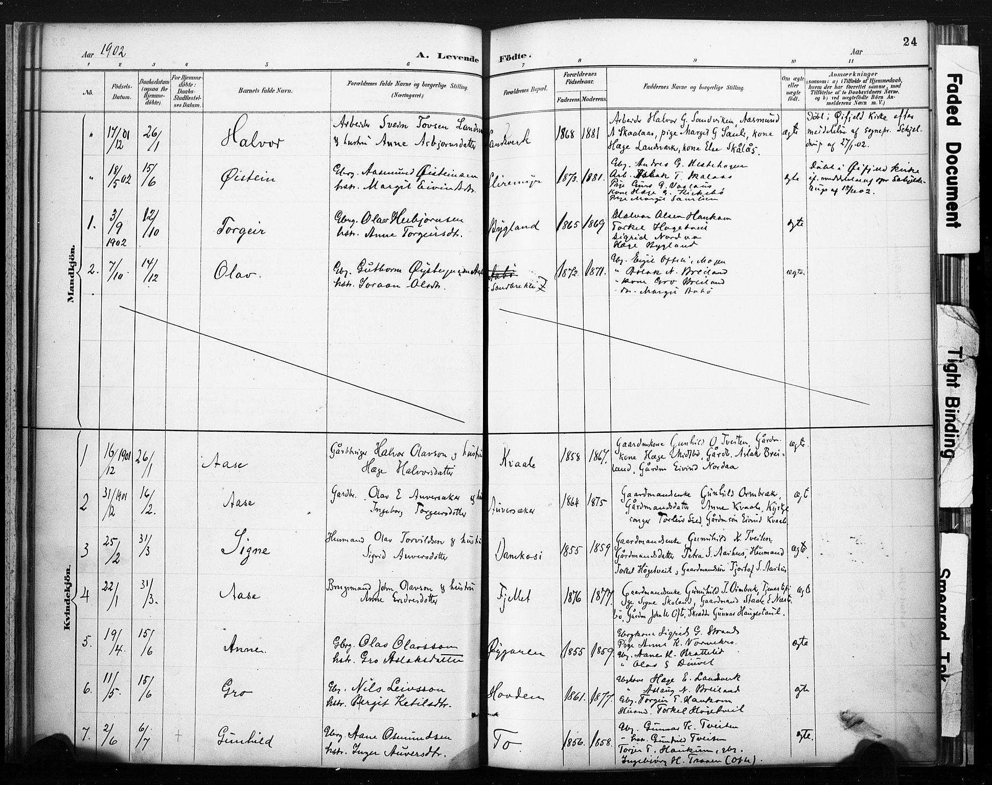 SAKO, Lårdal kirkebøker, F/Fc/L0002: Ministerialbok nr. III 2, 1887-1906, s. 24