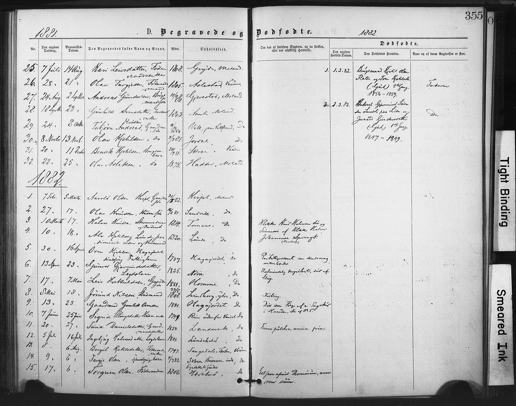 SAKO, Fyresdal kirkebøker, F/Fa/L0006: Ministerialbok nr. I 6, 1872-1886, s. 355