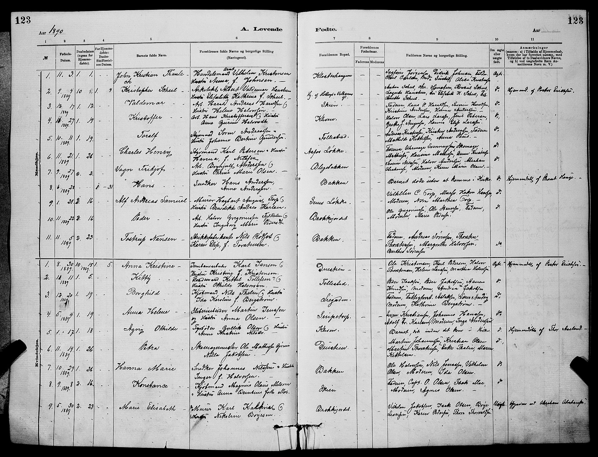 SAKO, Skien kirkebøker, G/Ga/L0006: Klokkerbok nr. 6, 1881-1890, s. 123