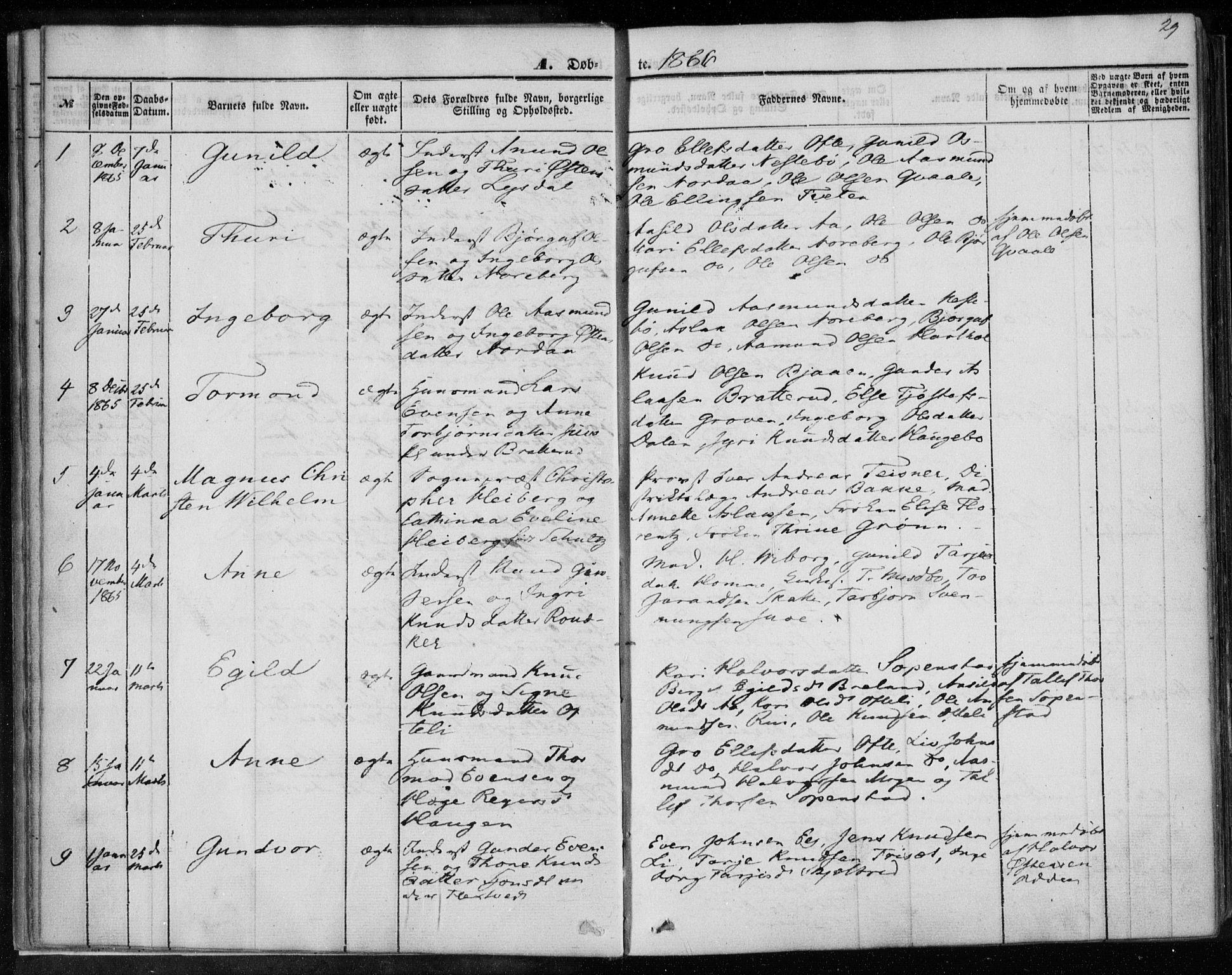 SAKO, Lårdal kirkebøker, F/Fa/L0006: Ministerialbok nr. I 6, 1861-1886, s. 29