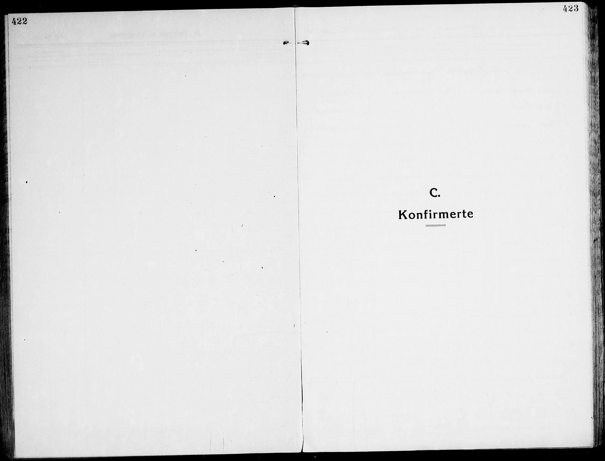 SAT, Ministerialprotokoller, klokkerbøker og fødselsregistre - Sør-Trøndelag, 607/L0321: Ministerialbok nr. 607A05, 1916-1935, s. 422-423
