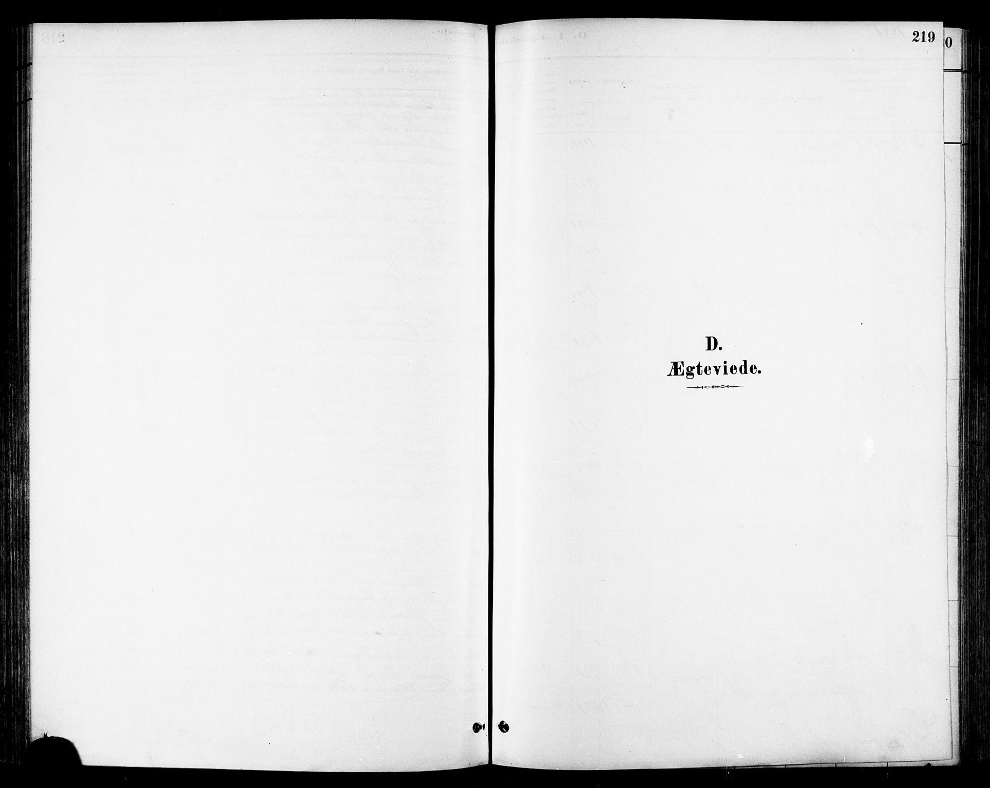 SAT, Ministerialprotokoller, klokkerbøker og fødselsregistre - Sør-Trøndelag, 678/L0901: Ministerialbok nr. 678A10, 1881-1894, s. 219