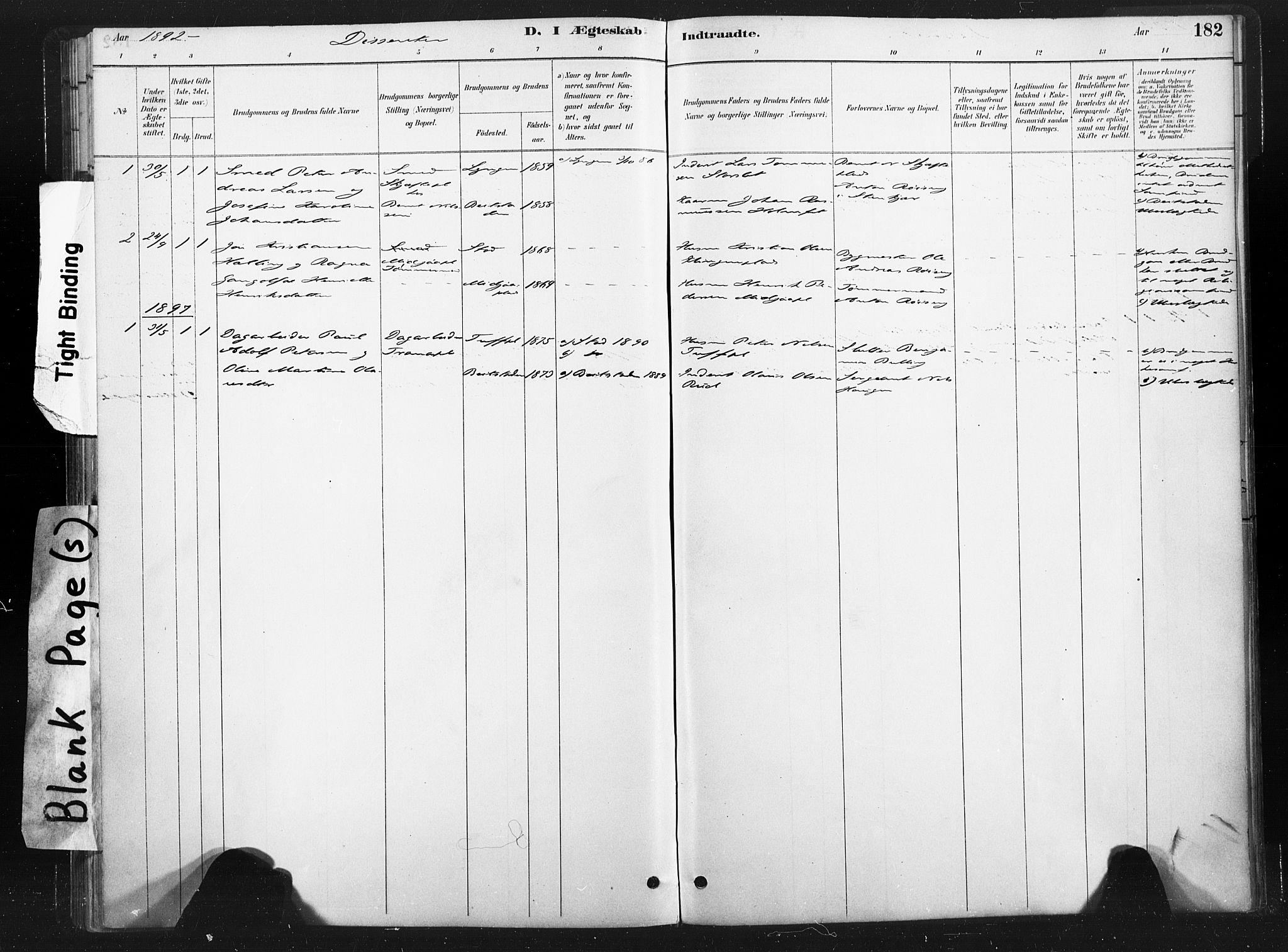 SAT, Ministerialprotokoller, klokkerbøker og fødselsregistre - Nord-Trøndelag, 736/L0361: Ministerialbok nr. 736A01, 1884-1906, s. 182
